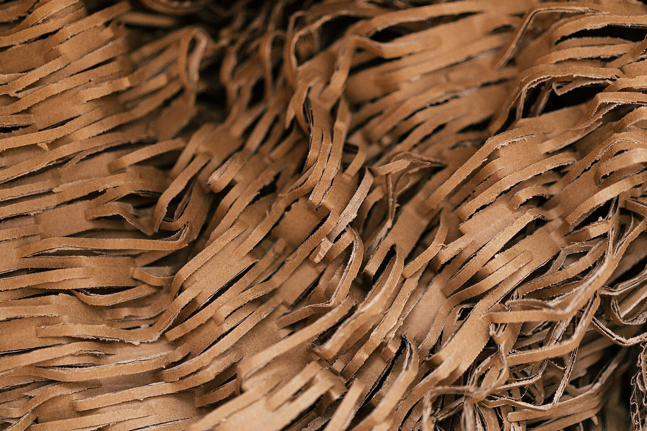 Shredded Cardboard Filling Free Stock Photo