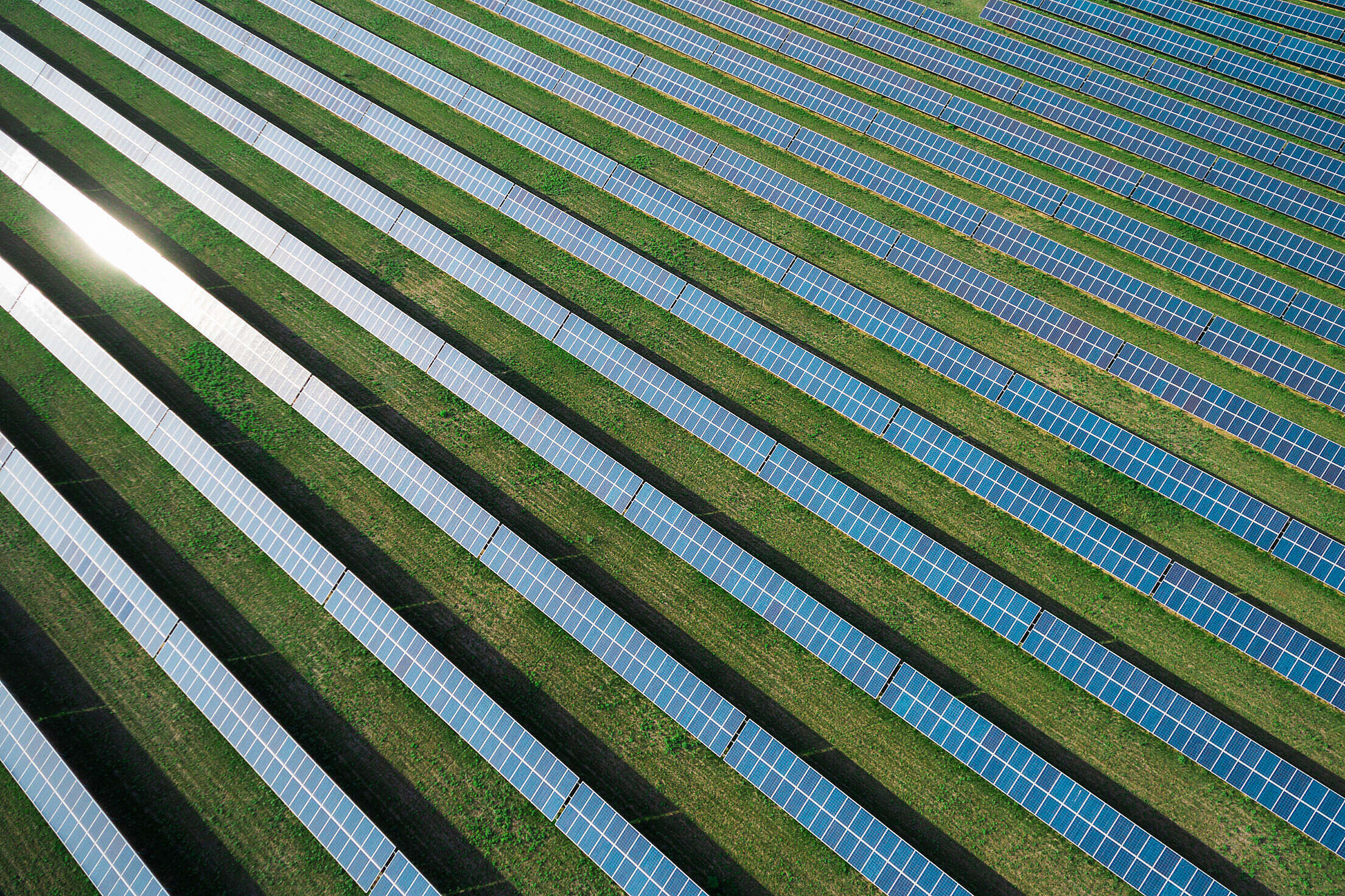 Solar Power Plant from Above #2 Free Stock Photo