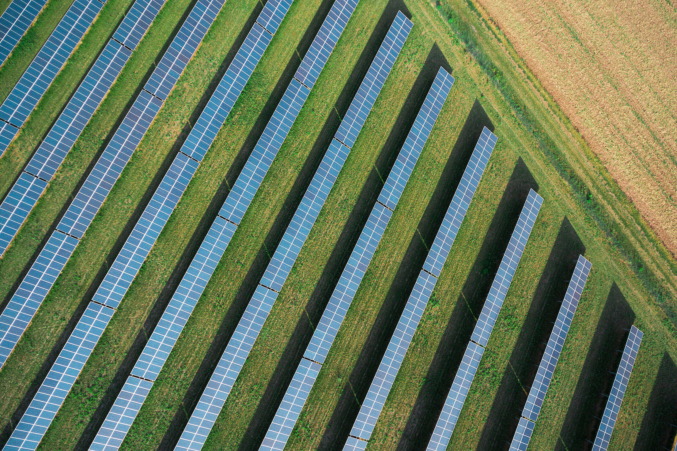 Solar Power Plant from Above Free Stock Photo