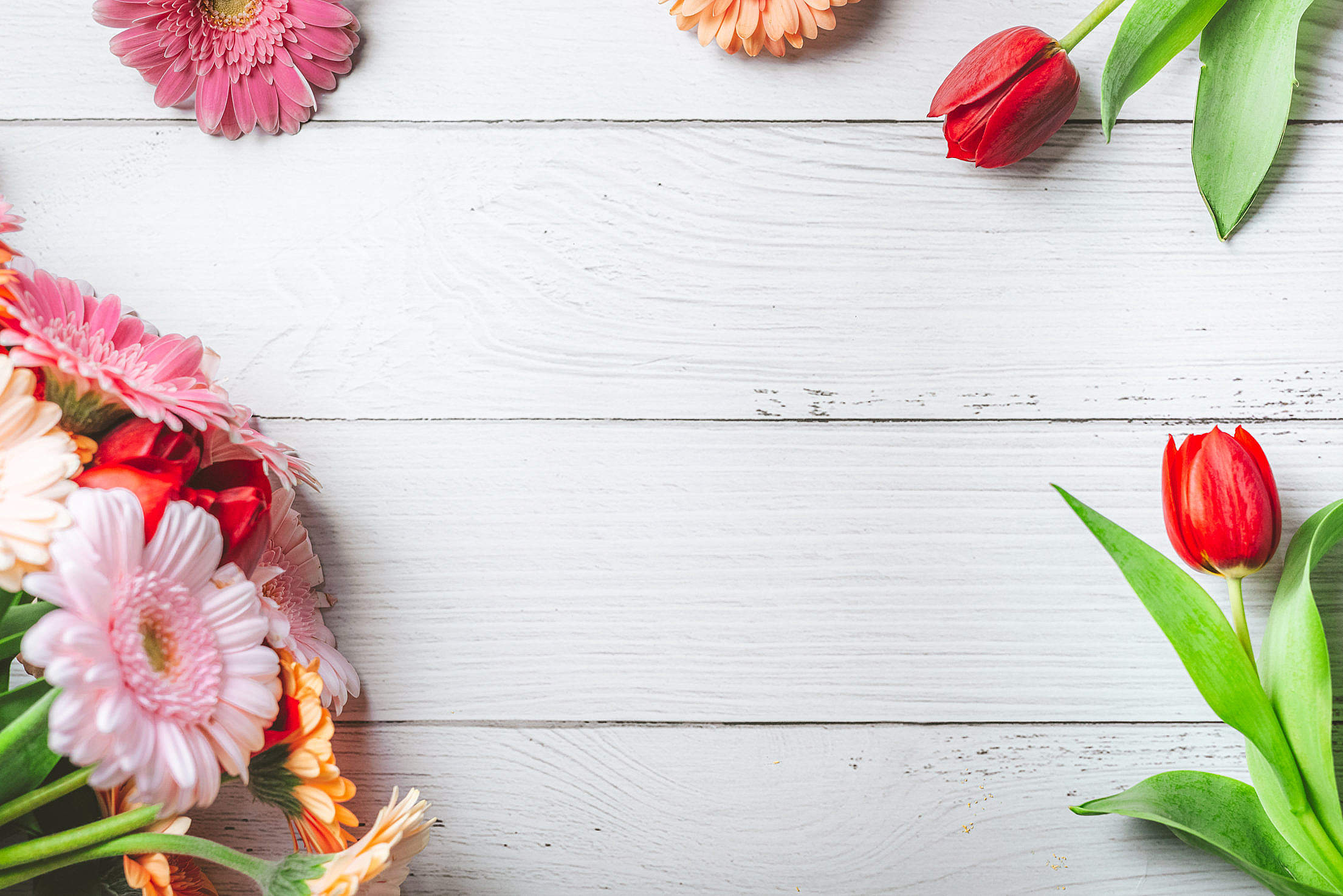 Spring Hero Background with Flowers Free Stock Photo