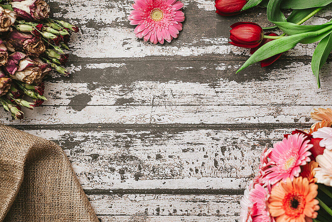 Download Spring Rustic Hero Background with Flowers FREE Stock Photo