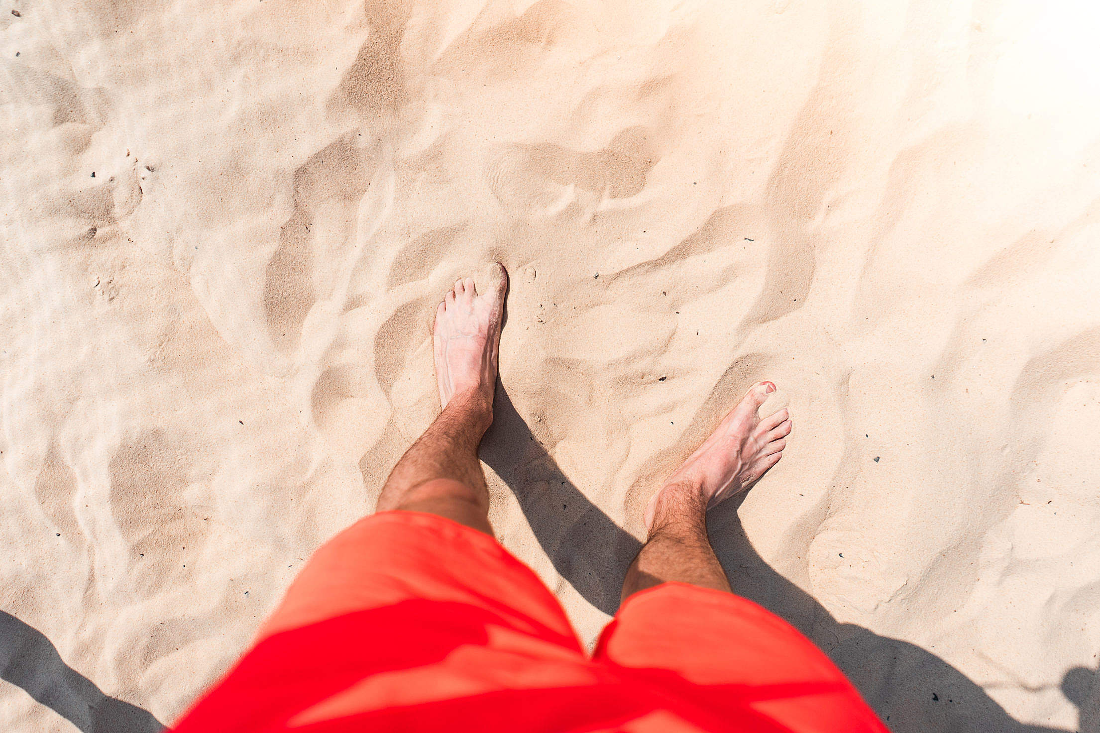 Standing in Sand Free Stock Photo