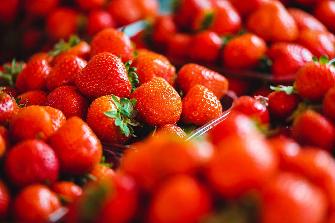 Download Strawberries FREE Stock Photo