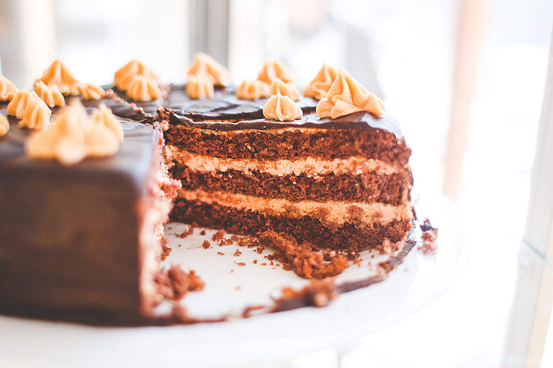 Download Sweet Yummy Chocolate Cake FREE Stock Photo