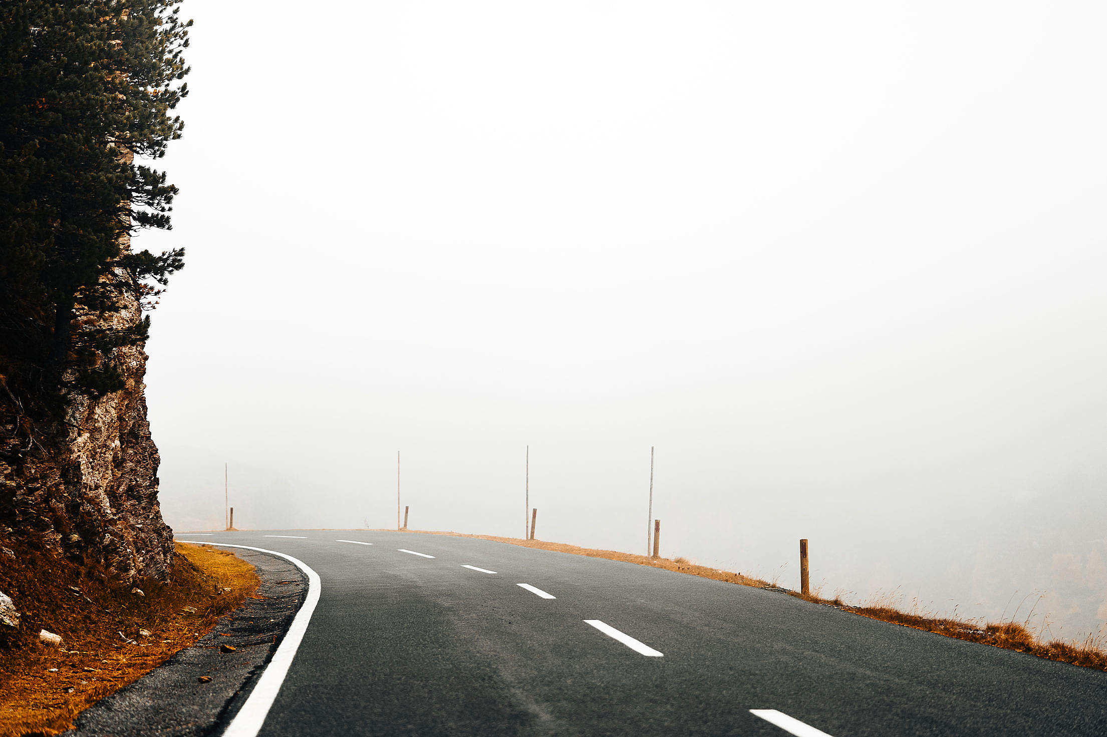 The Road in The Fog Free Stock Photo
