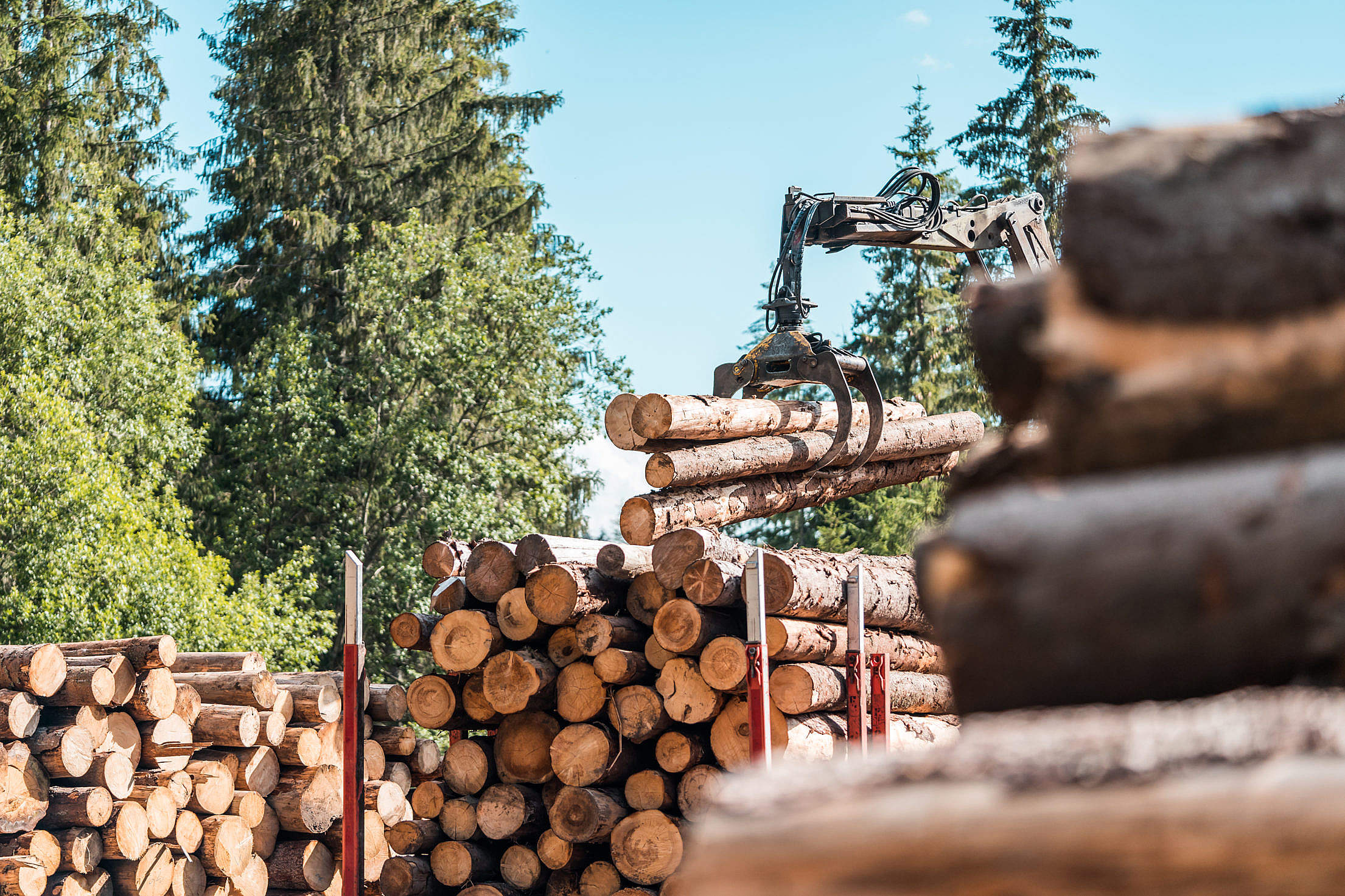 Timber Truck Logging Forestry Operations Free Stock Photo