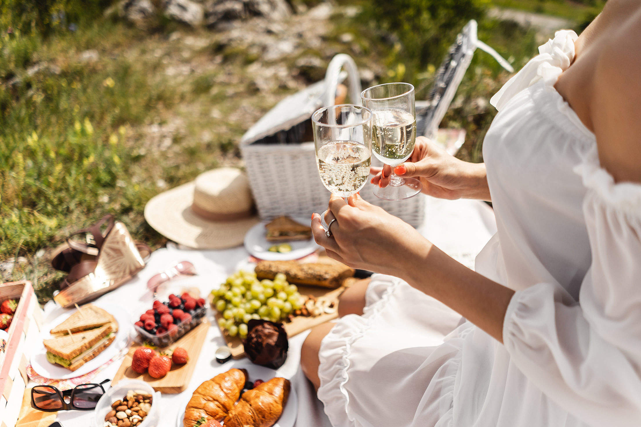 Toast at a Picnic Free Stock Photo