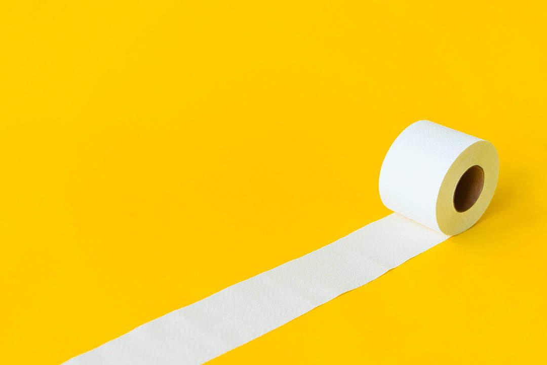 Download Toilet Paper FREE Stock Photo