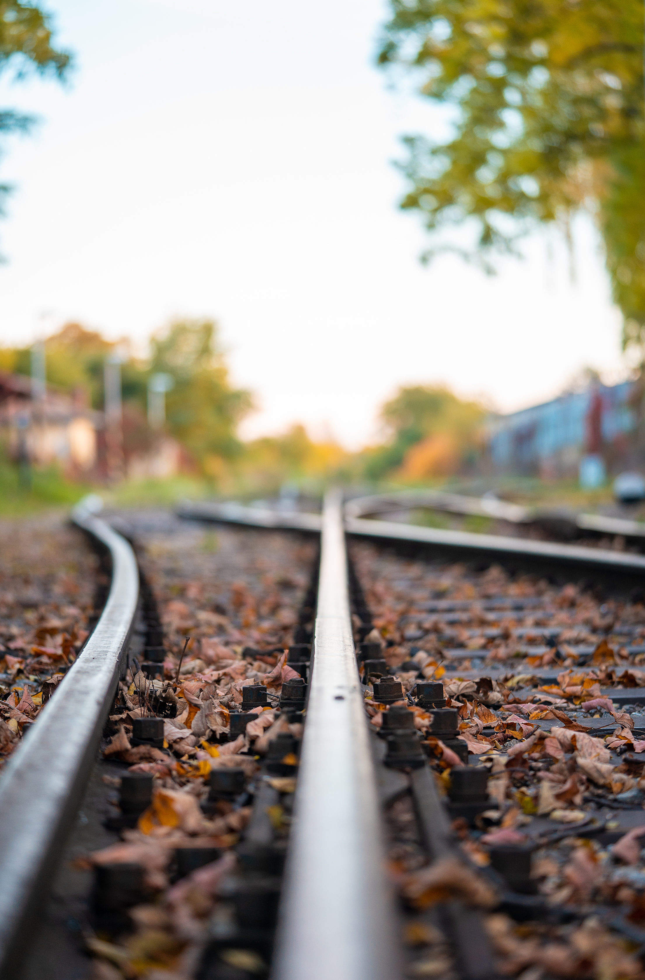 Train Tracks Close Up Free Stock Photo