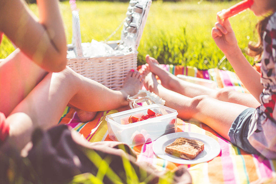 Download Two Girls Enjoying First Summer Picnic in Nature FREE Stock Photo