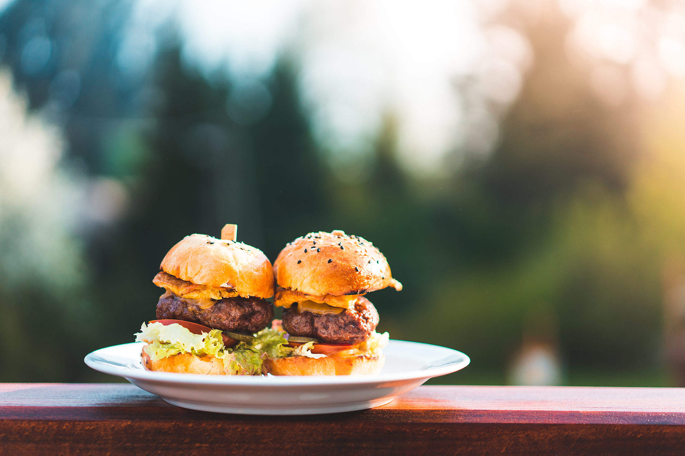 Two Mini Hamburgers Free Stock Photo