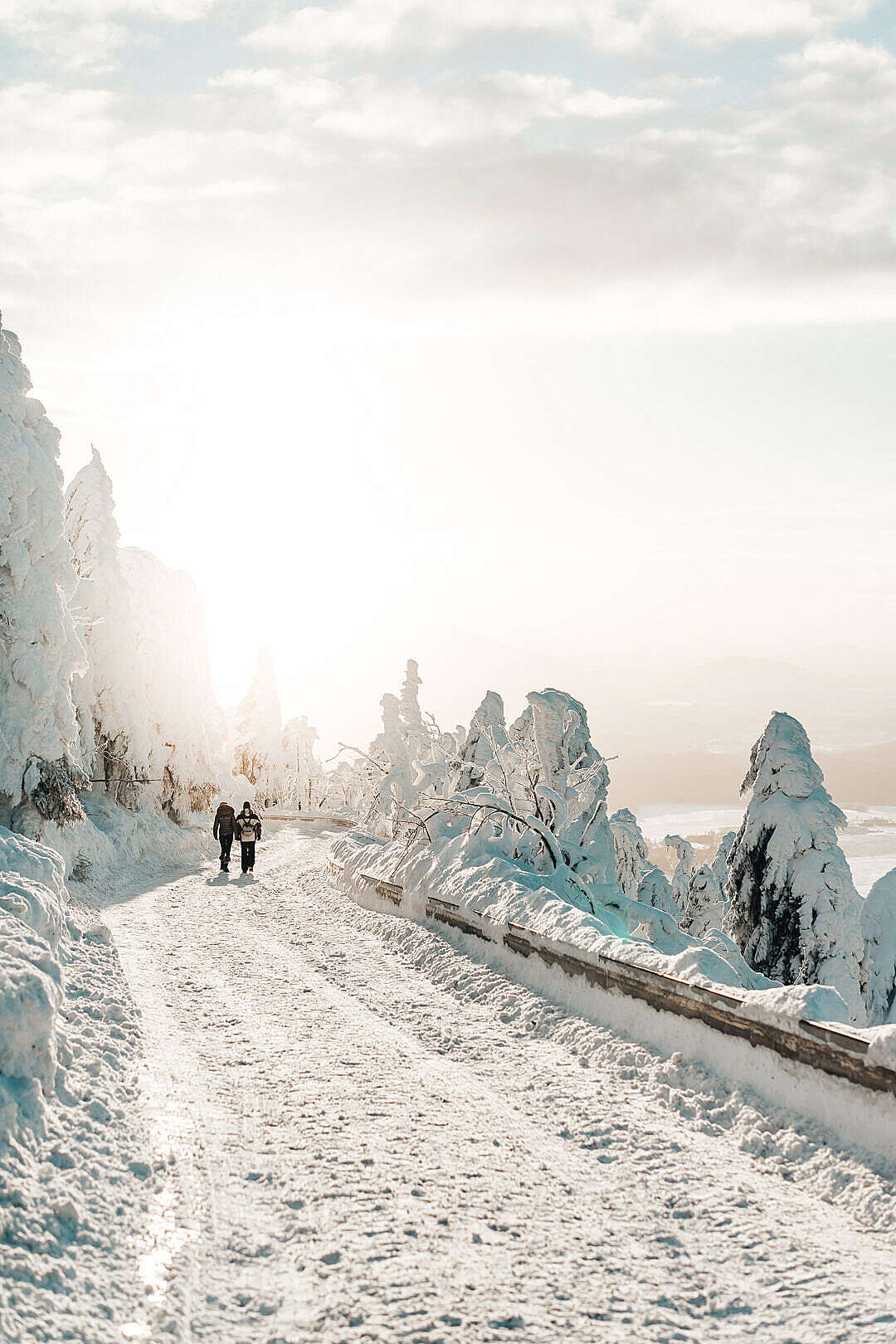 Download Two Persons Walking on Snow Covered Road FREE Stock Photo