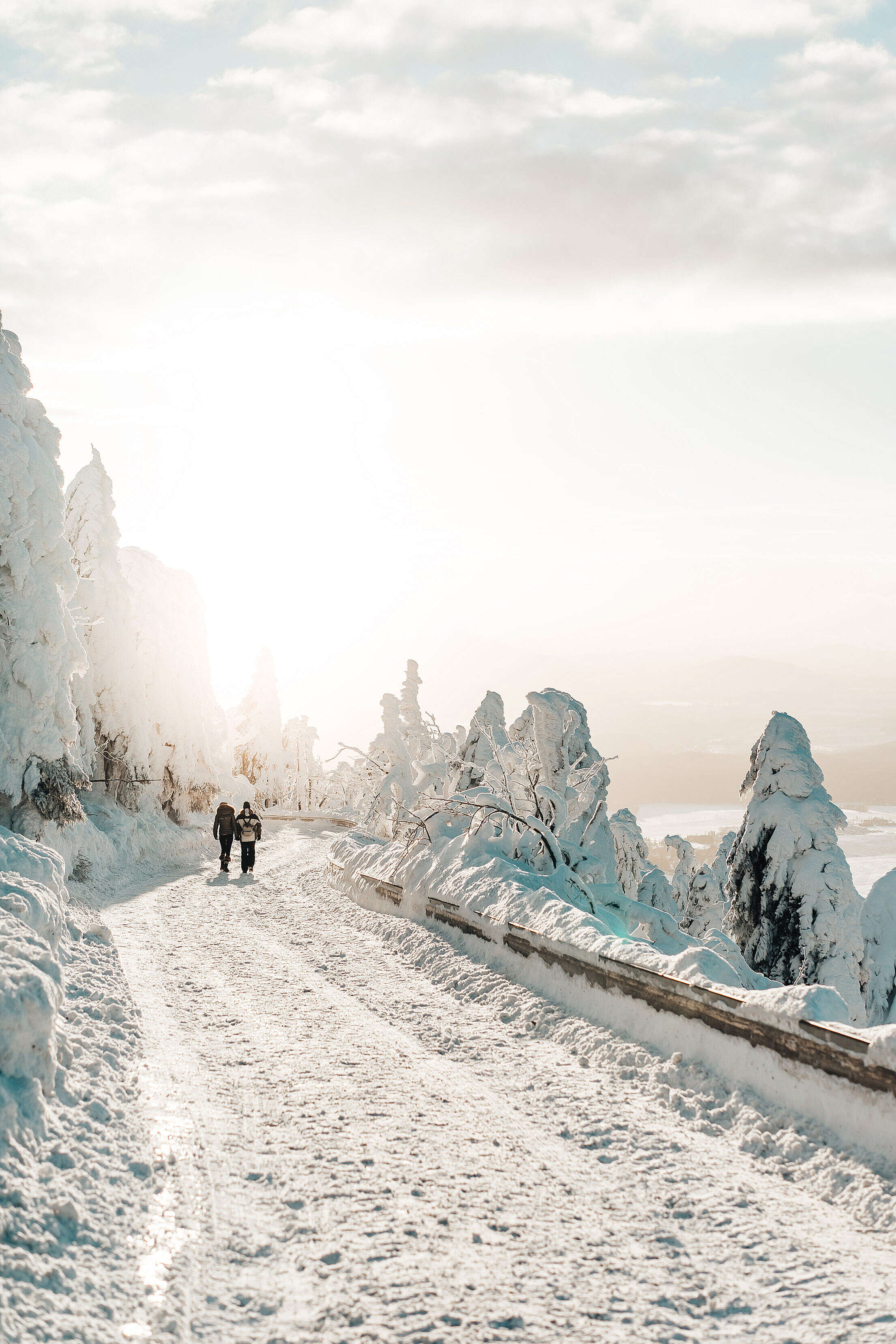 Two Persons Walking on Snow Covered Road Free Stock Photo