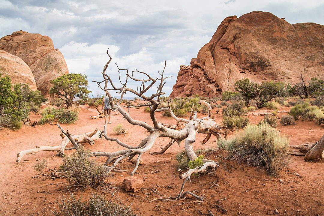 Download Utah Nature Cliché FREE Stock Photo