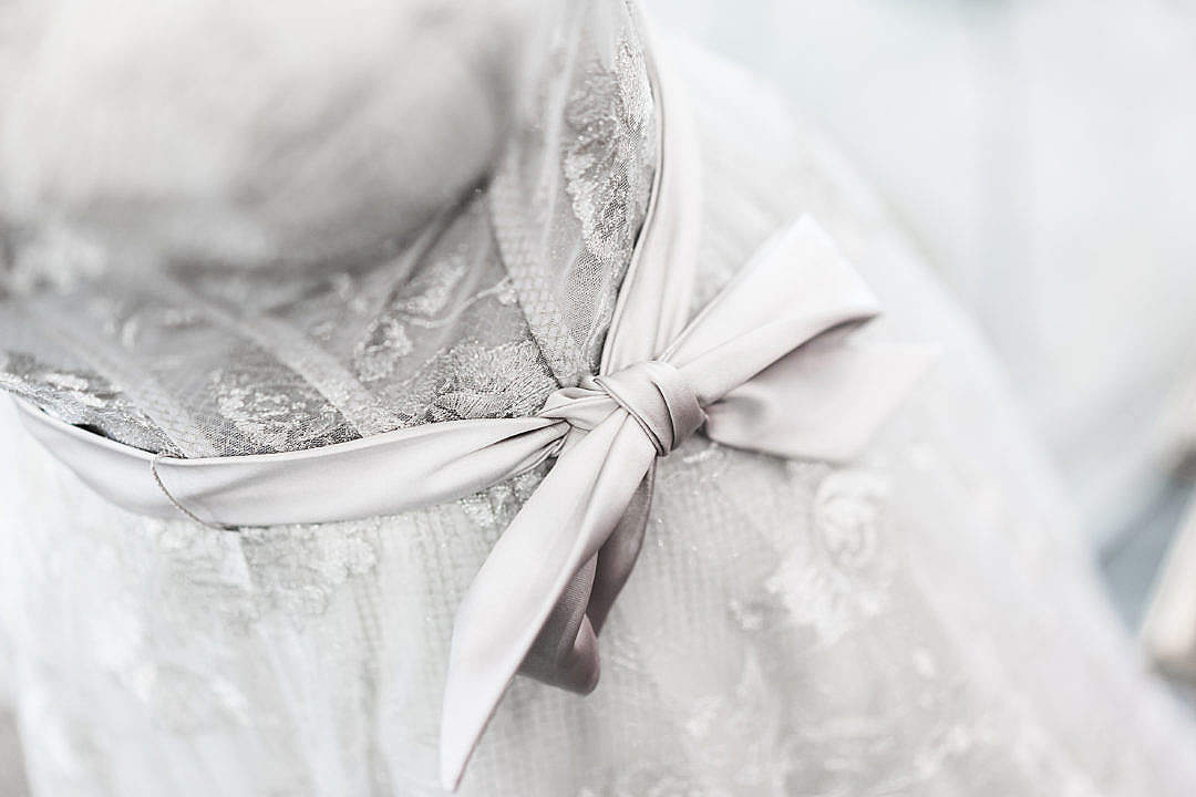 Download Velvet Bow on Silver Wedding Dress FREE Stock Photo