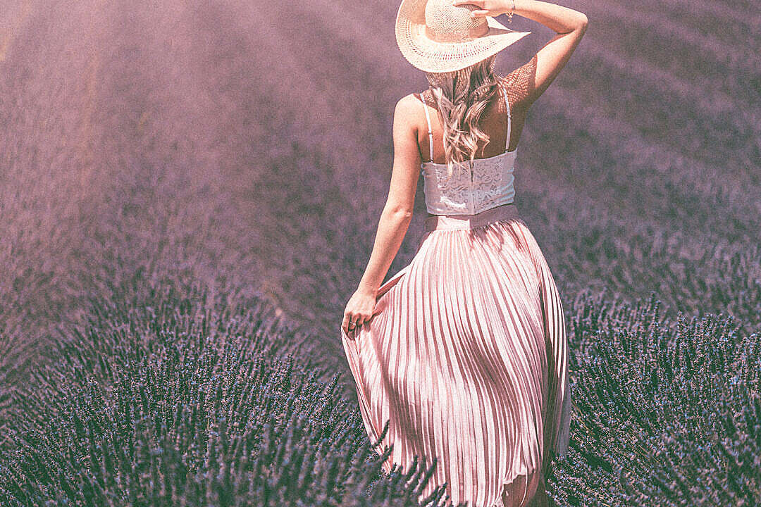 Download Vintage Lavender Field FREE Stock Photo