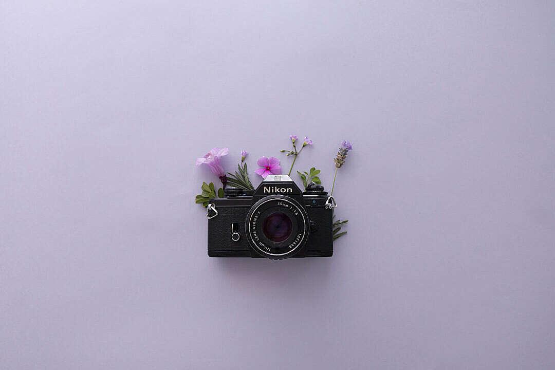 Download Vintage Nikon Camera FREE Stock Photo