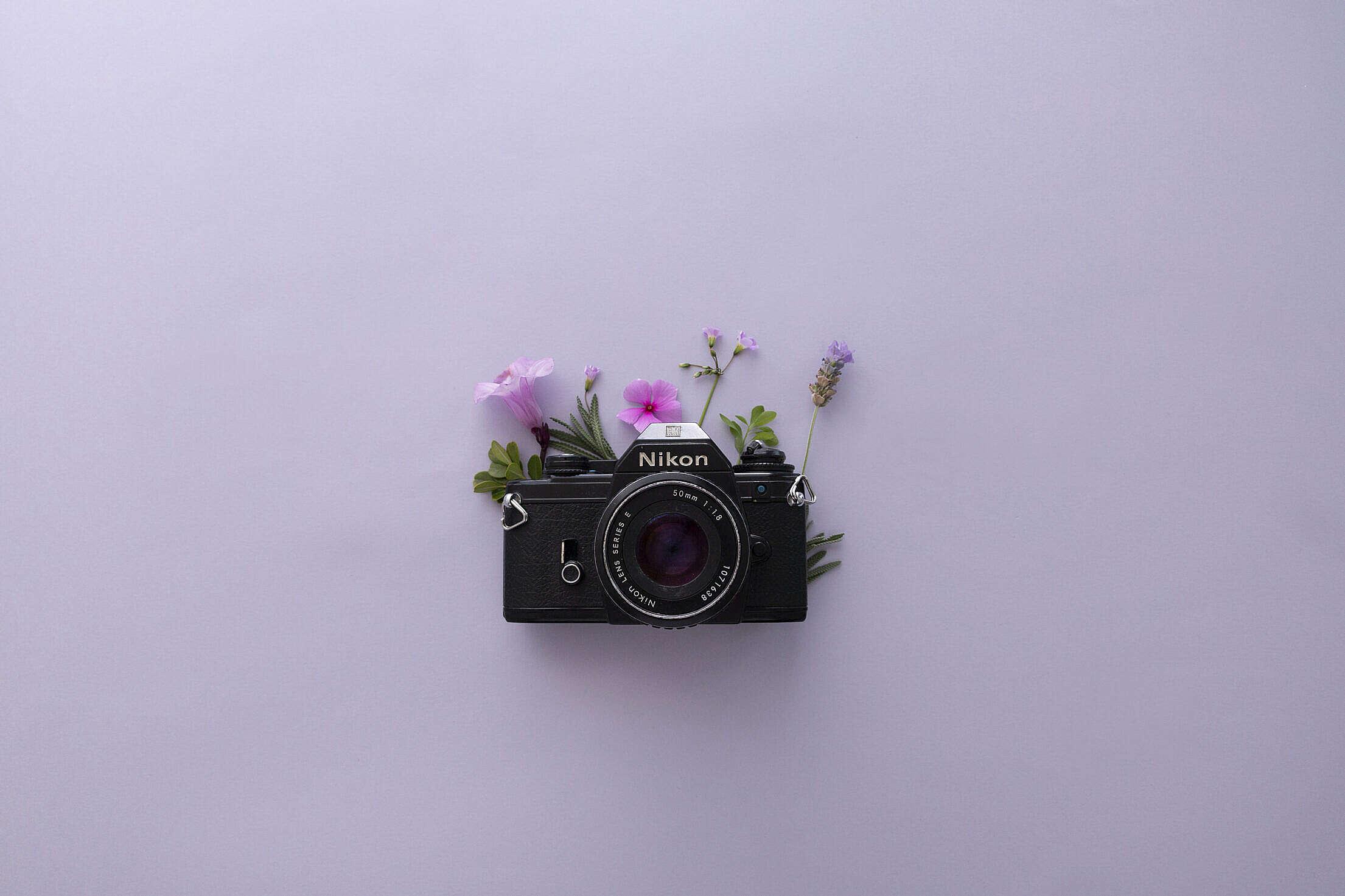 Vintage Nikon Camera Free Stock Photo