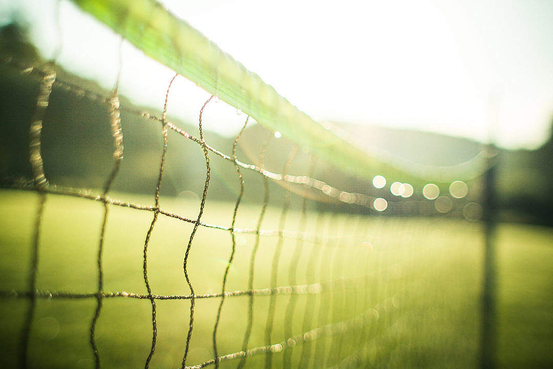 Download Wet Tennis Net in the Morning FREE Stock Photo