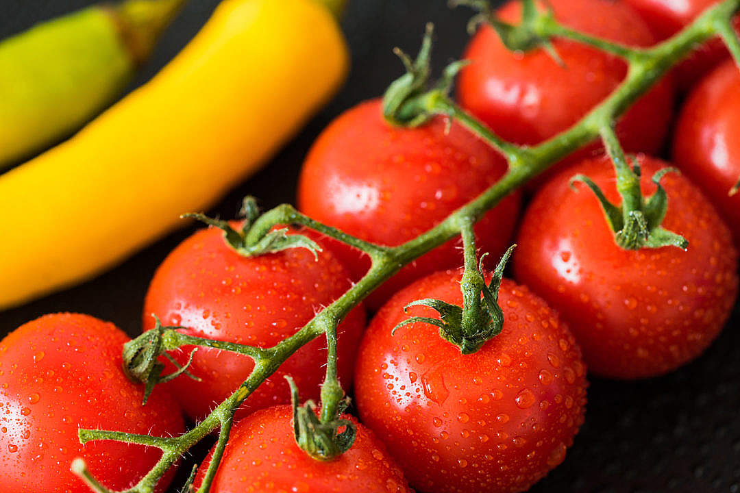 Download Wet Tomatoes and Peppers Close Up FREE Stock Photo
