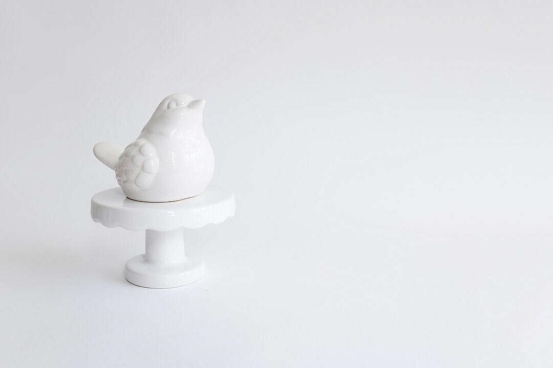 Download White Bird Decoration FREE Stock Photo