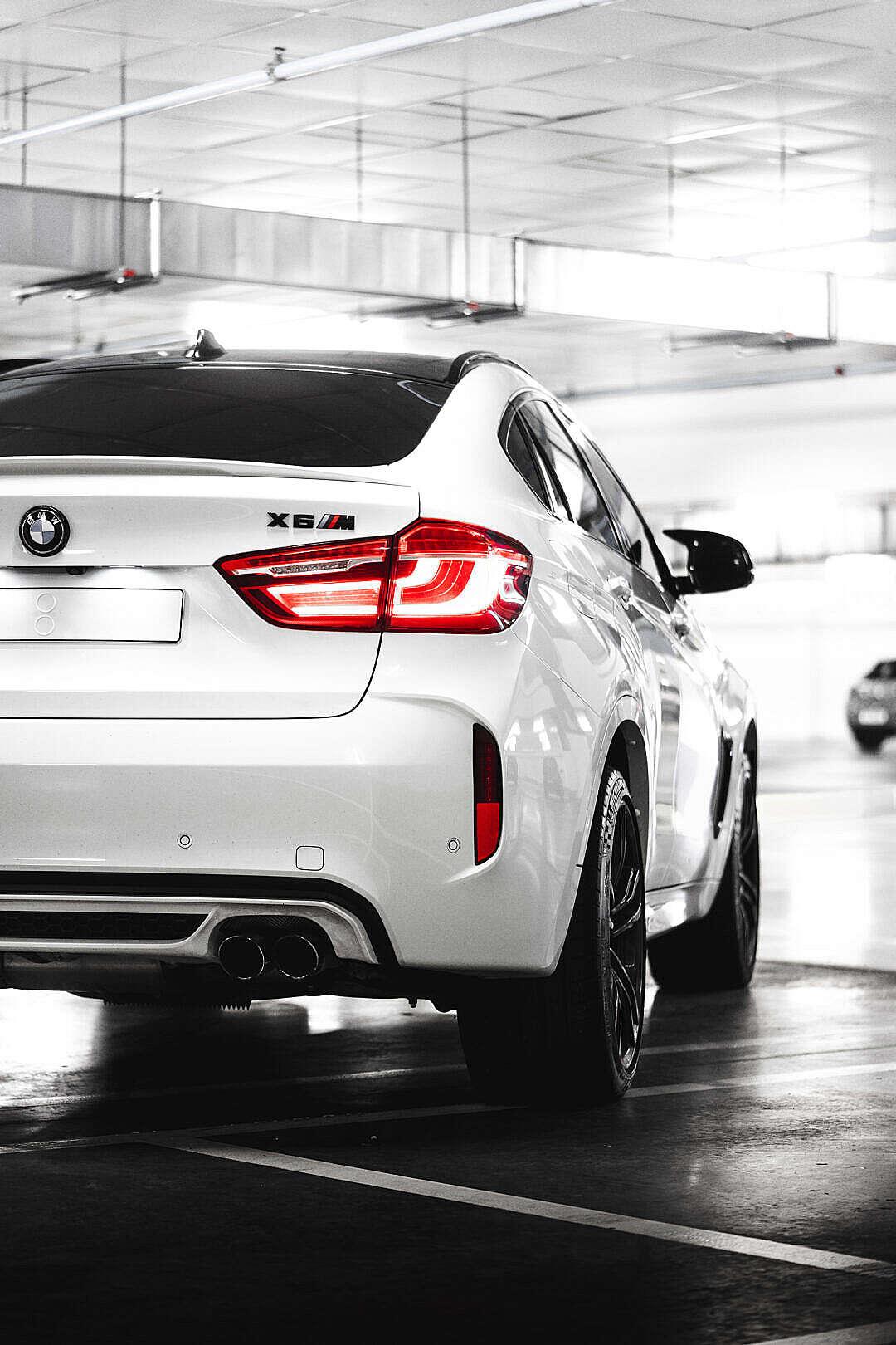 Download White BMW X6M Rear View FREE Stock Photo