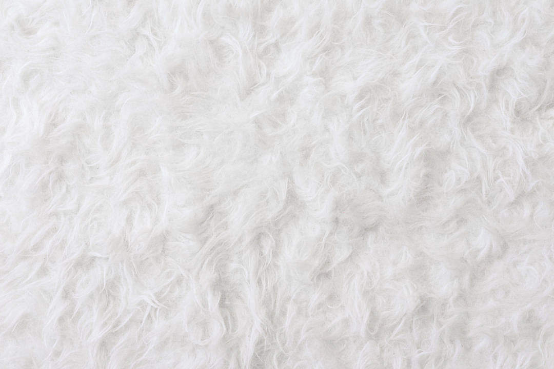Download White Eco Fur Pattern Background FREE Stock Photo