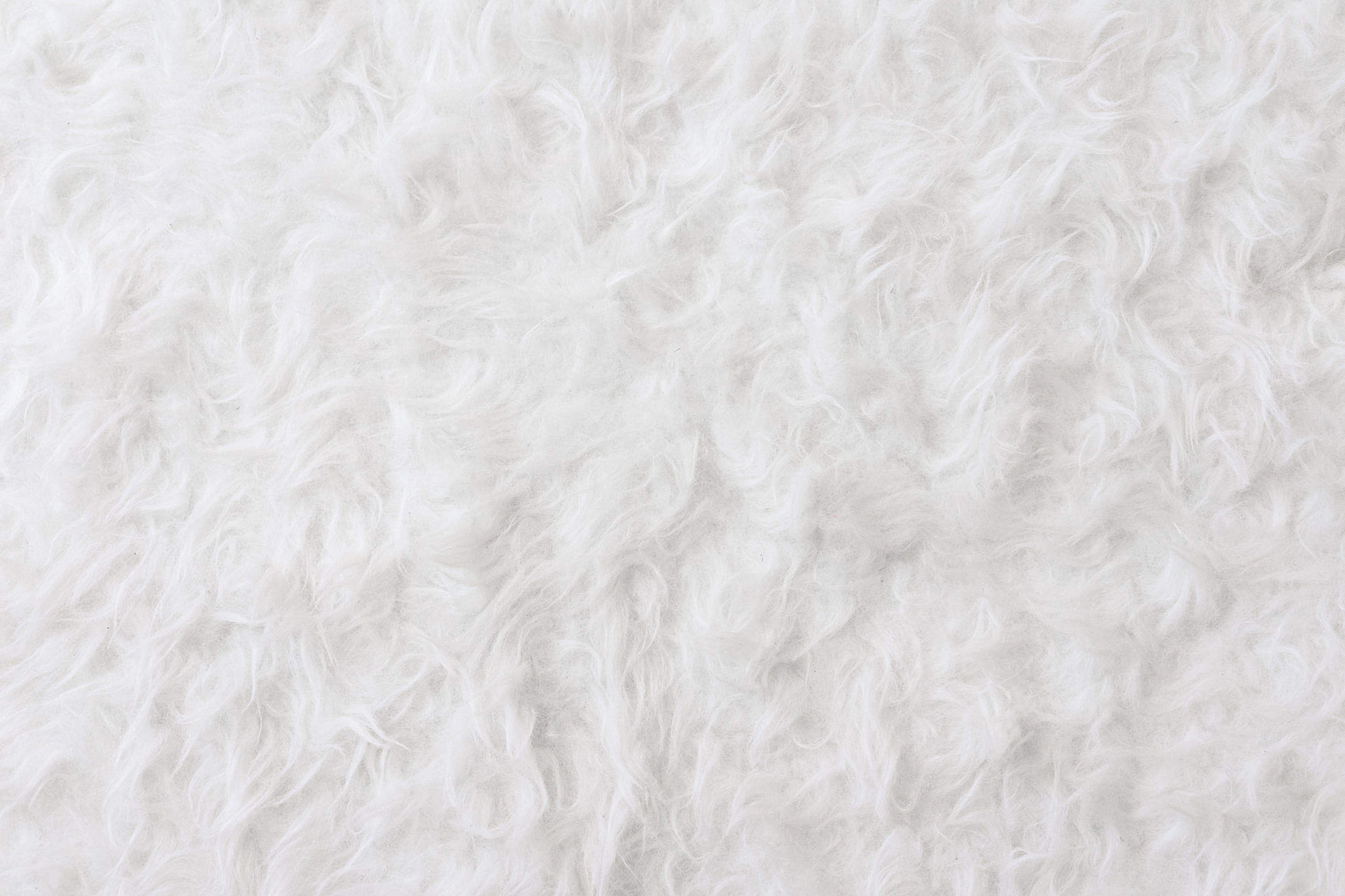 White Eco Fur Pattern Background Free Stock Photo