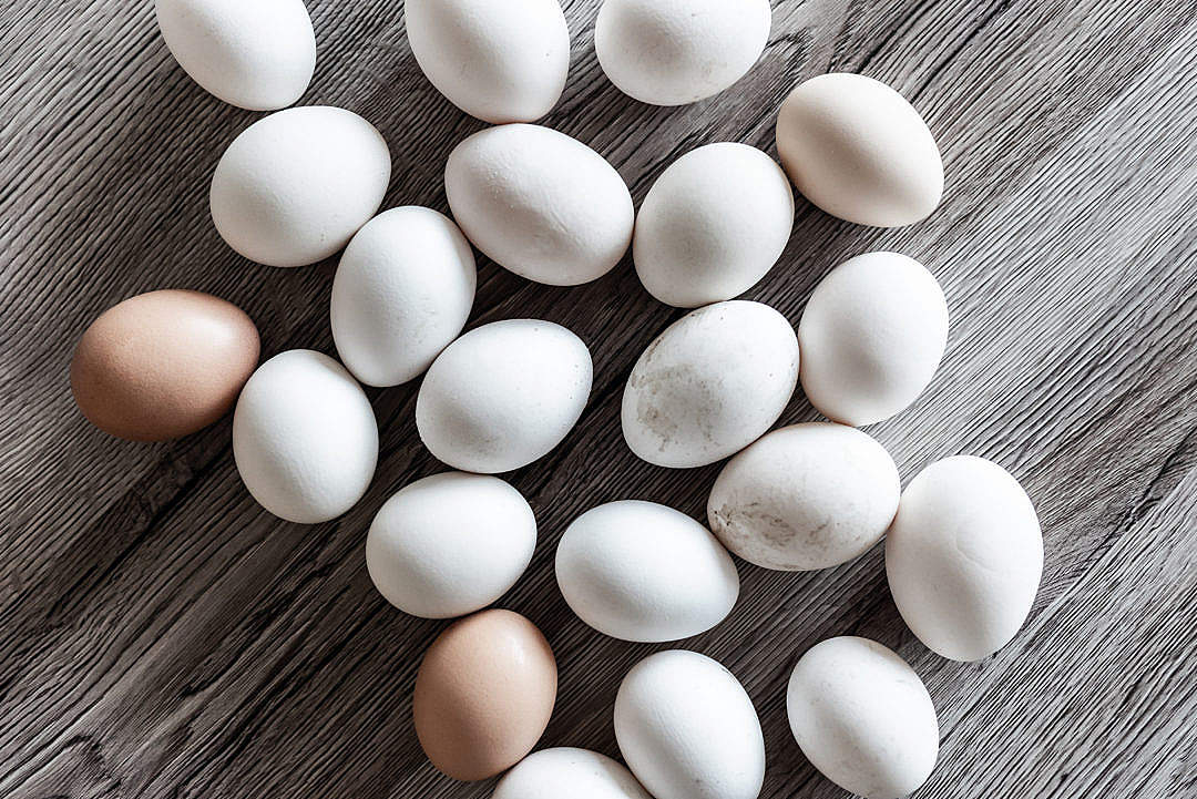 Download White Eggs Natural FREE Stock Photo