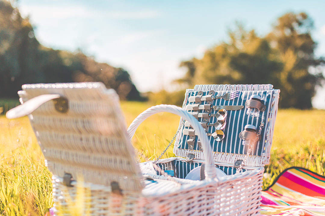 Download White Picnic Basket with Service on a Meadow FREE Stock Photo