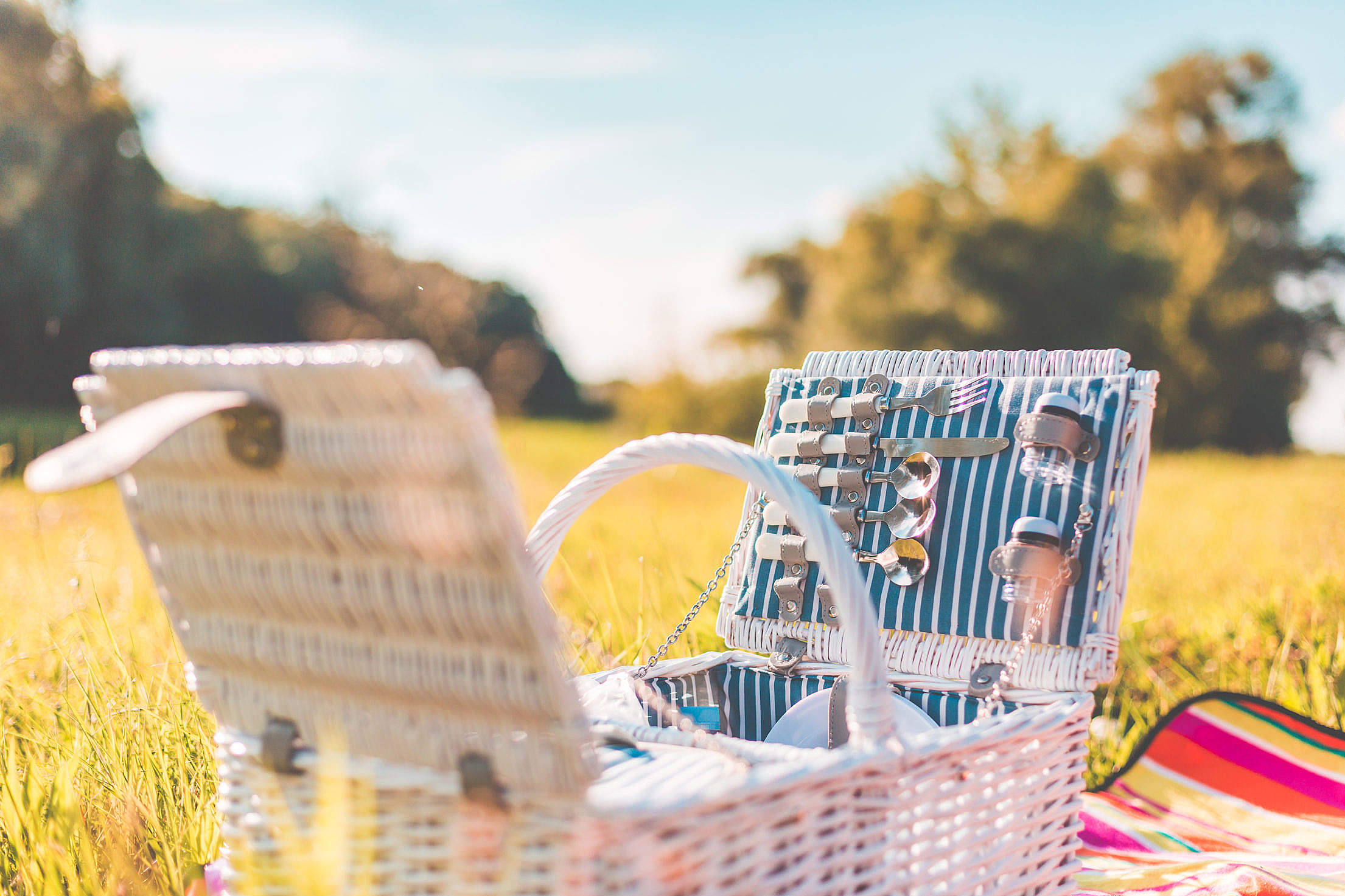 White Picnic Basket with Service on a Meadow Free Stock Photo