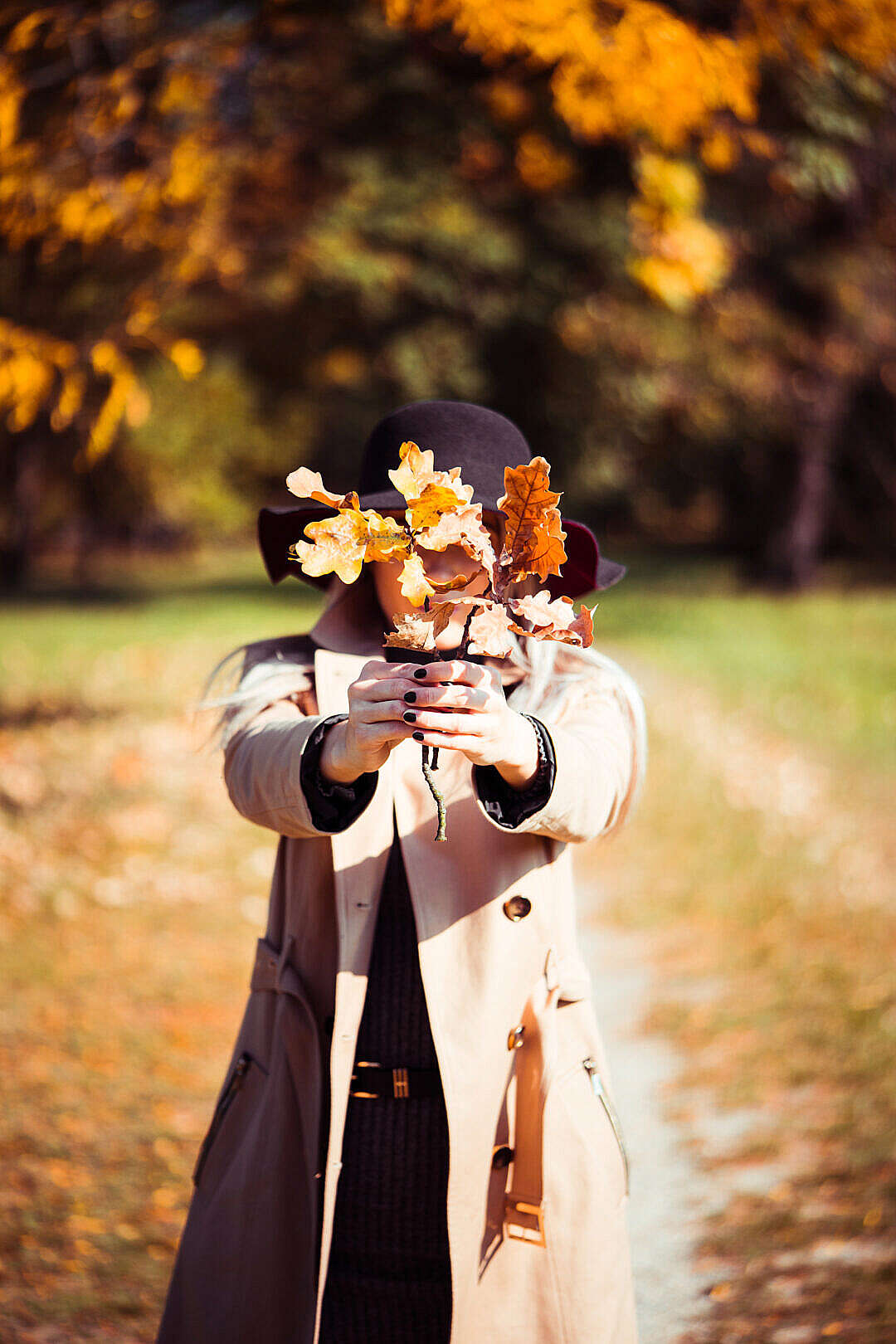 Download Woman Covering Her Face with Autumn Leaves FREE Stock Photo
