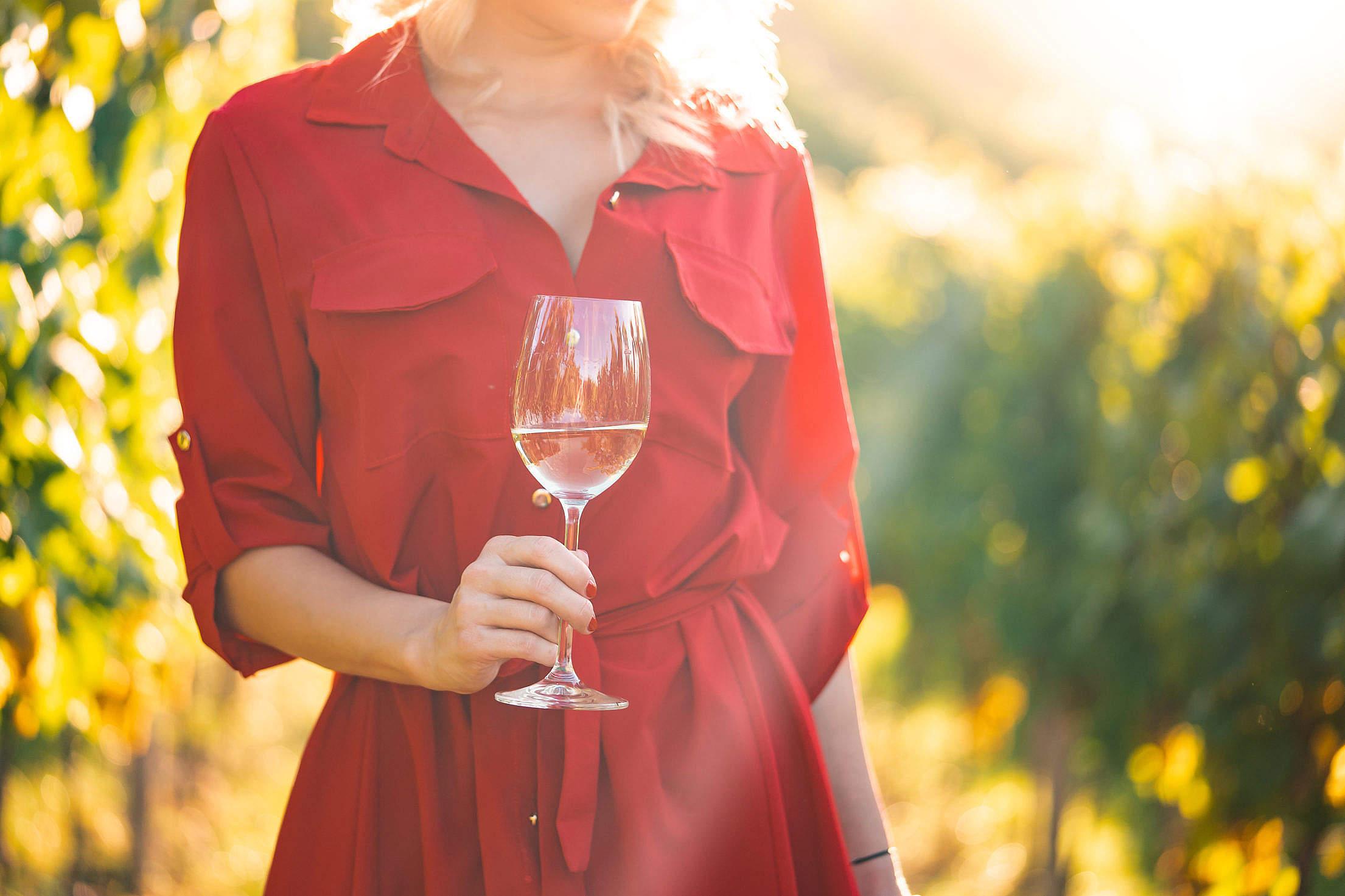 Woman Drinking Wine Free Stock Photo