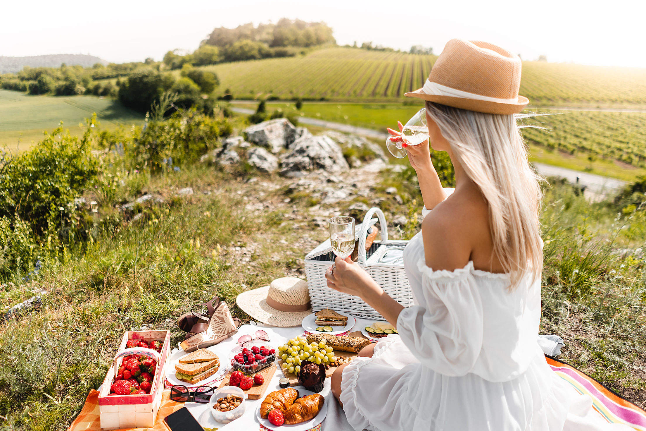 Woman Enjoying a Picnic in South Moravia Wine Region Free Photo