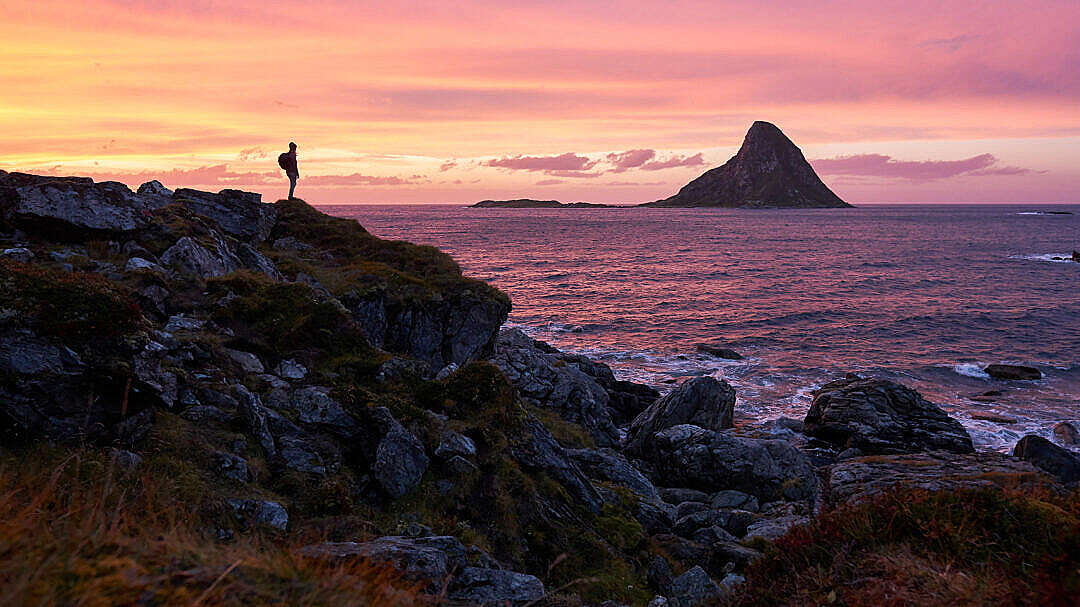 Download Woman Enjoying the View from the Coast of Northern Norway FREE Stock Photo