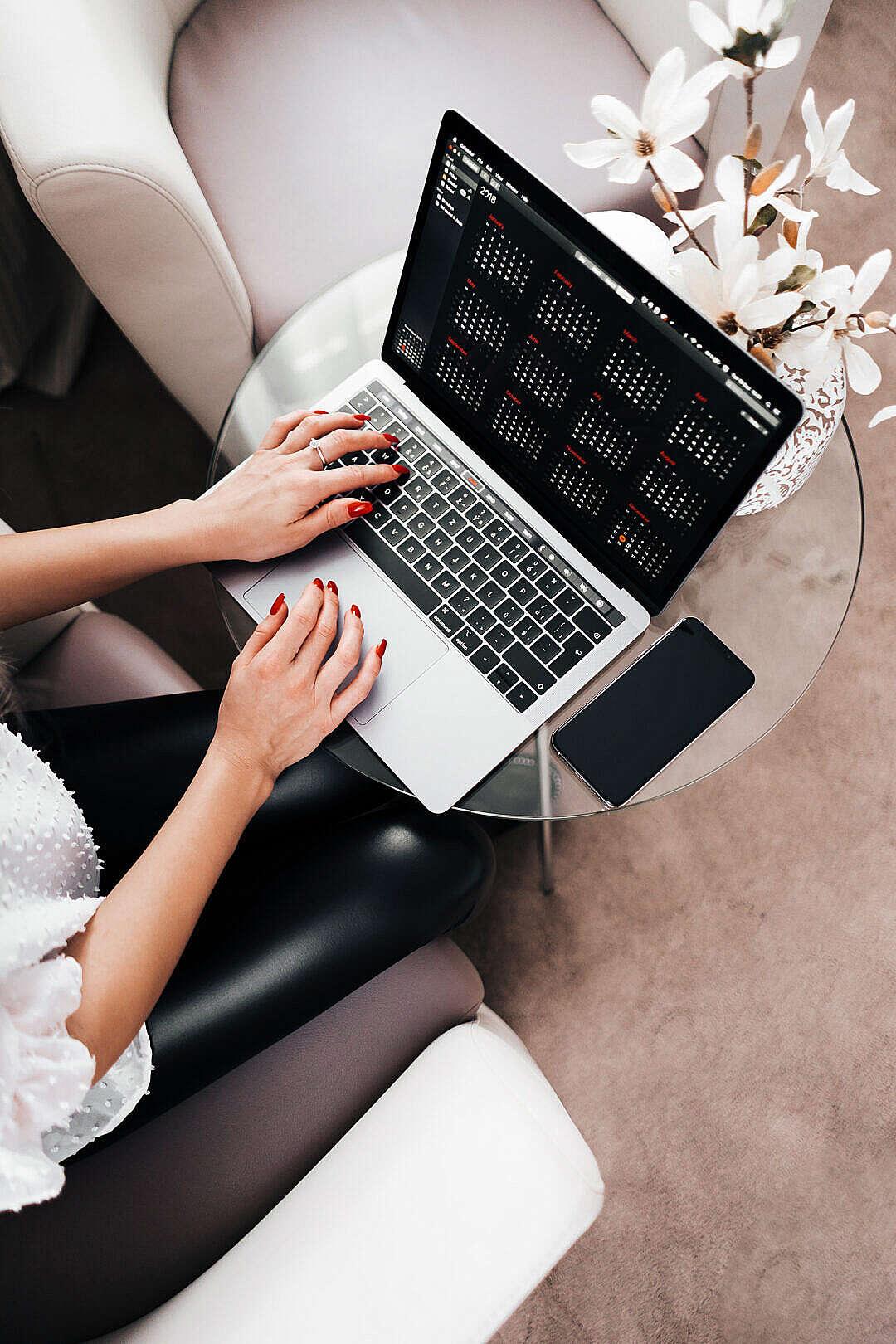 Download Woman Entrepreneur Working on her Laptop FREE Stock Photo