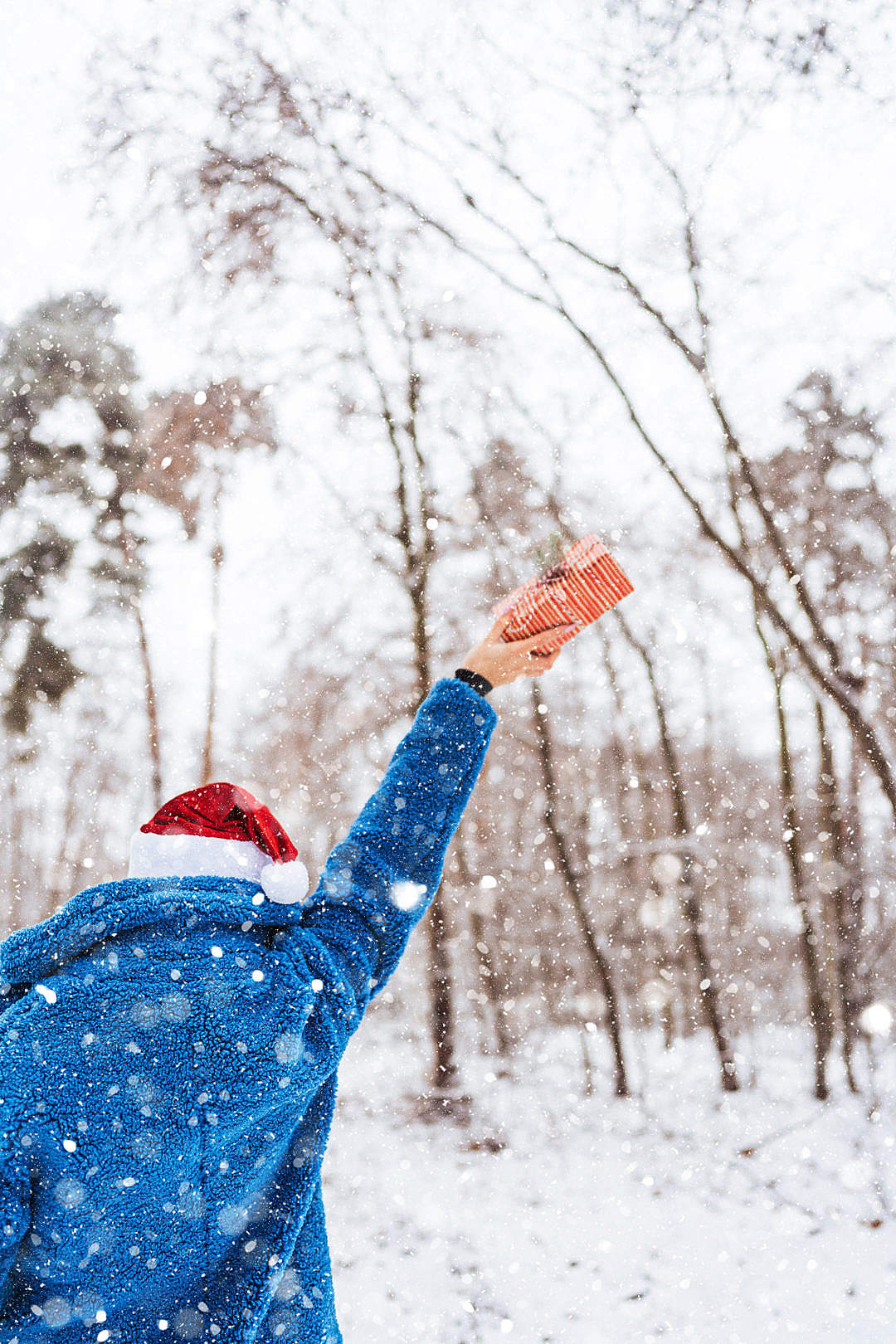 Download Woman Holding a Gift in a Snowy Landscape FREE Stock Photo