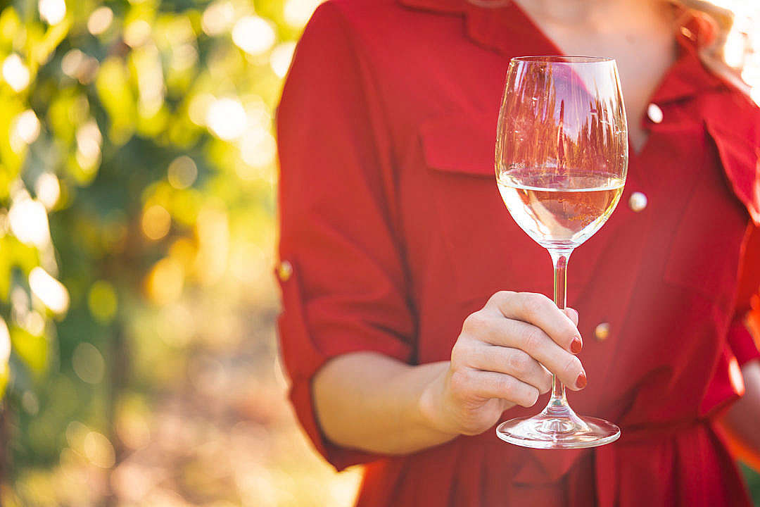 Download Woman Holding a Glass of Wine in a Vineyard FREE Stock Photo