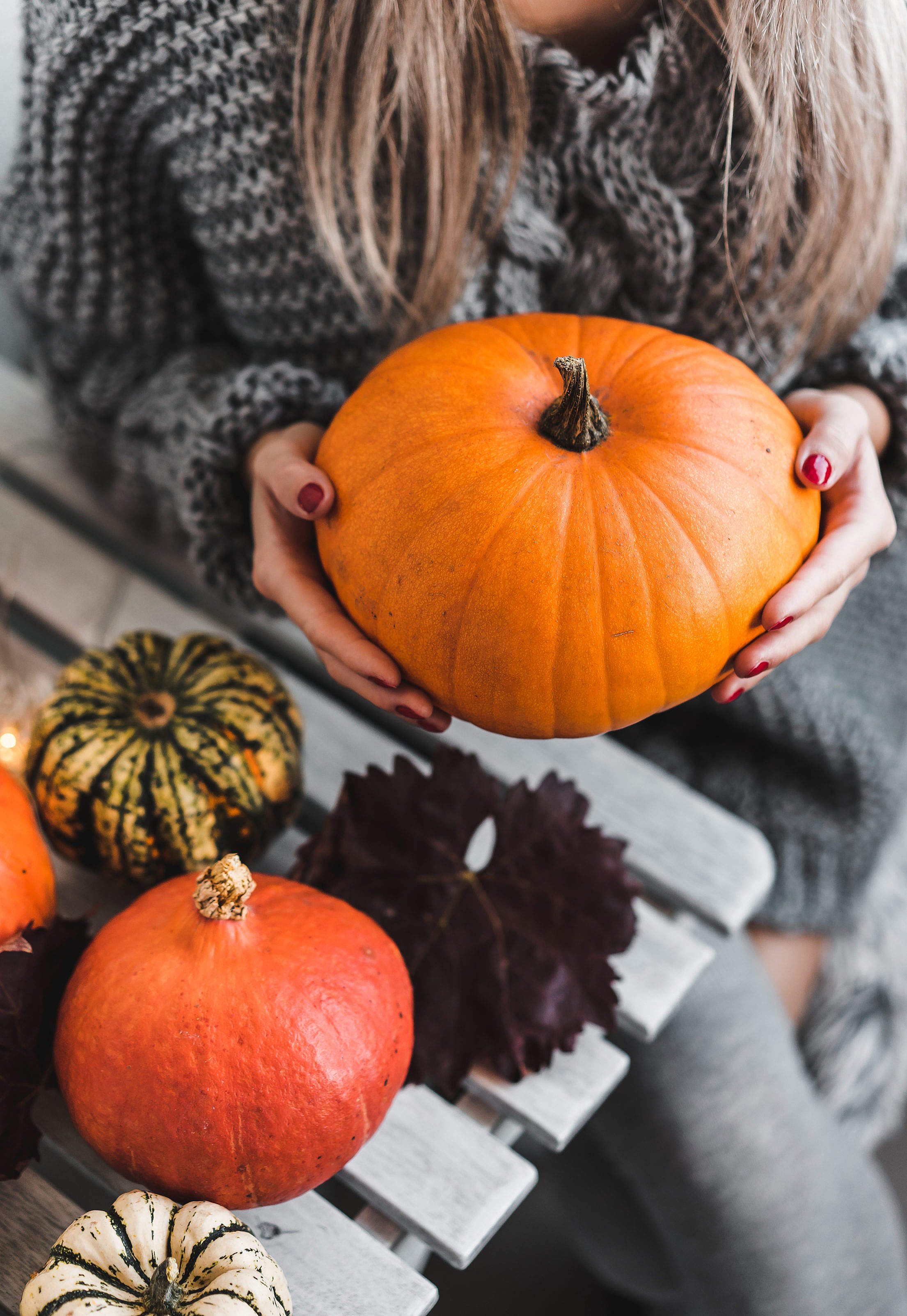 Woman Holding a Halloween Pumpkin Free Stock Photo
