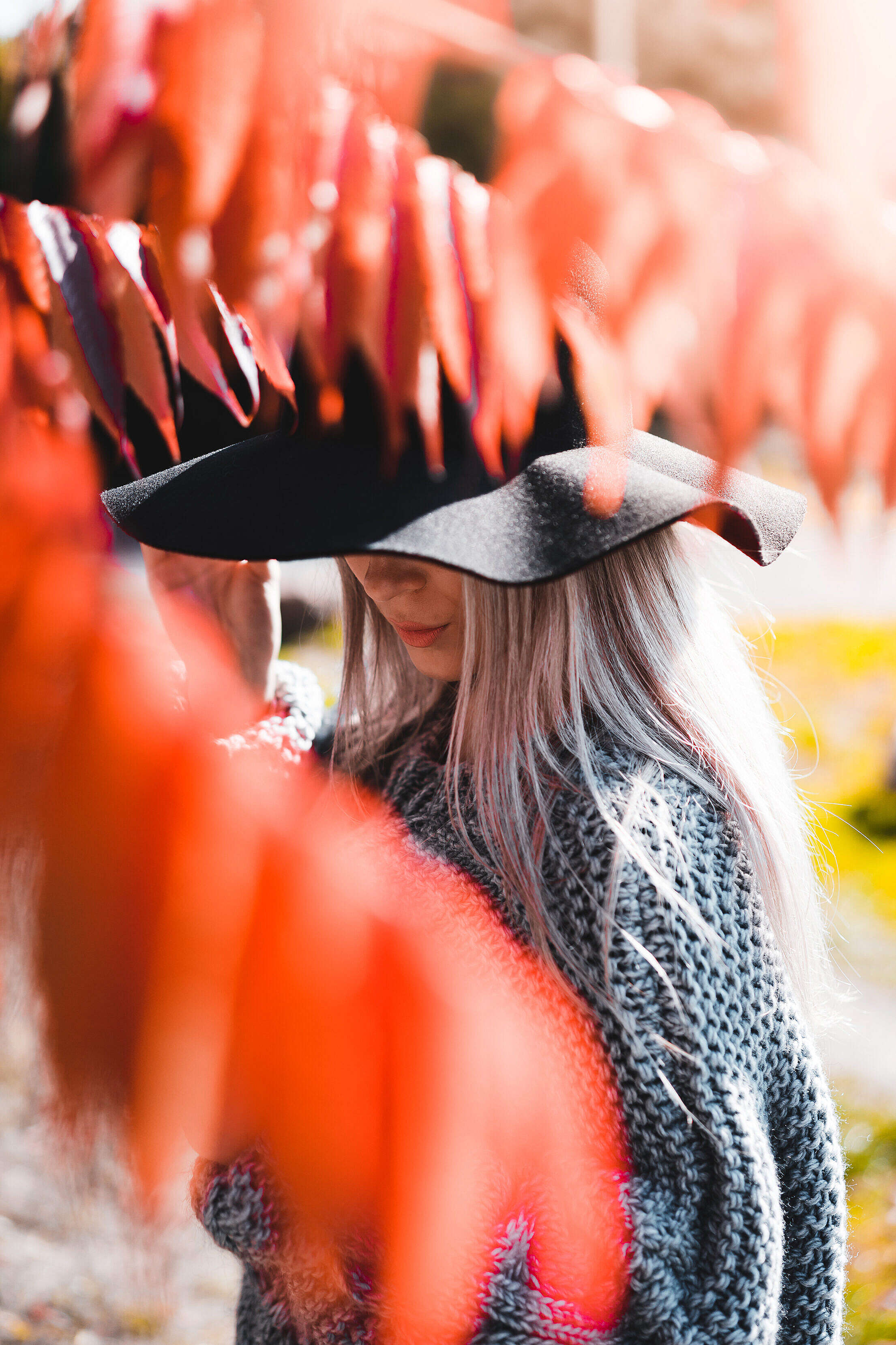 Woman in a Hat Hiding Behind The Tree Branches Free Stock Photo