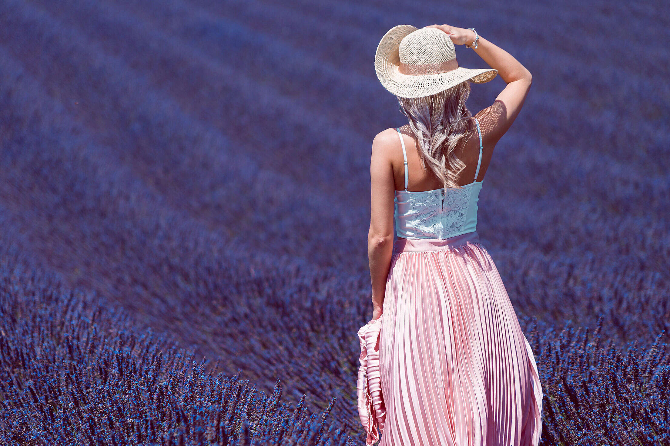 Woman in Lavender Field Free Stock Photo