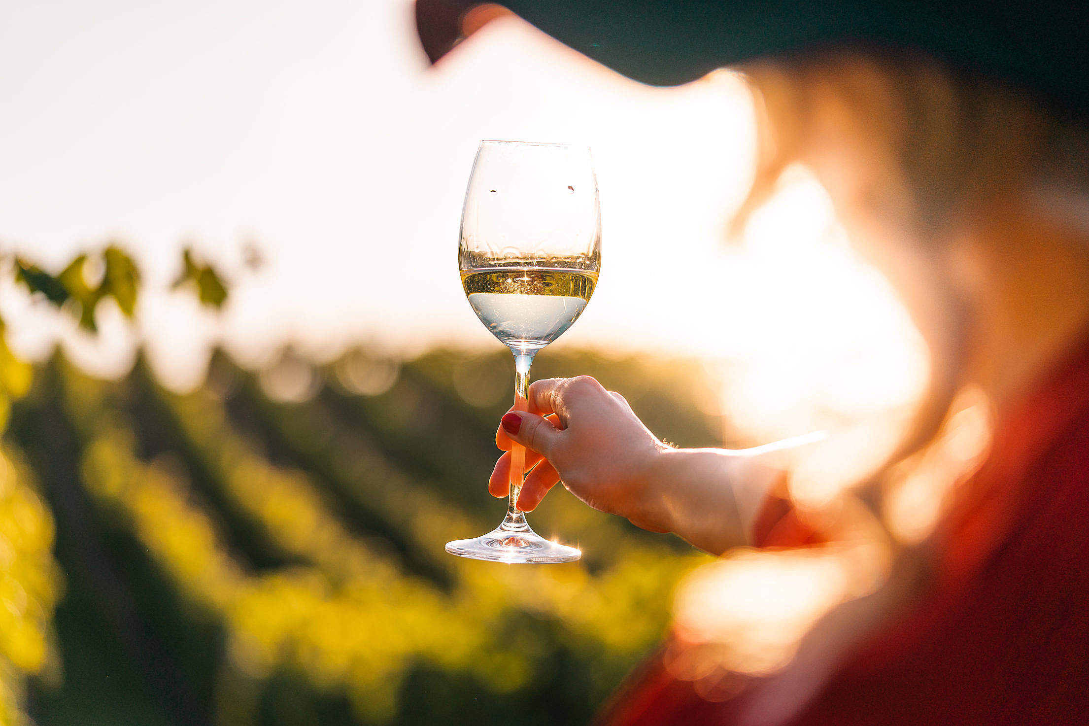 Woman Looking at a Glass of Wine Free Stock Photo