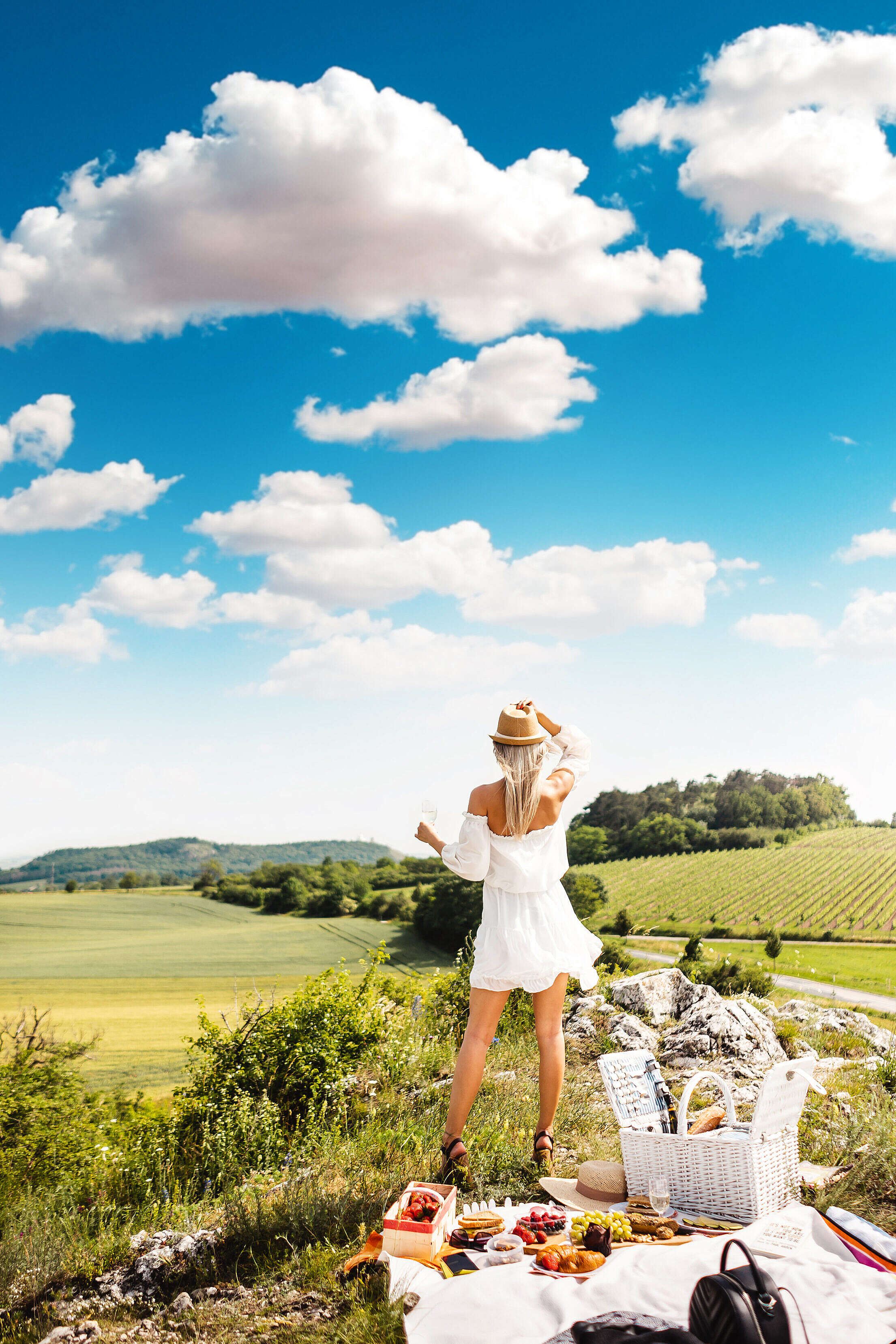 Woman Looking at The View of Vineyard Free Stock Photo