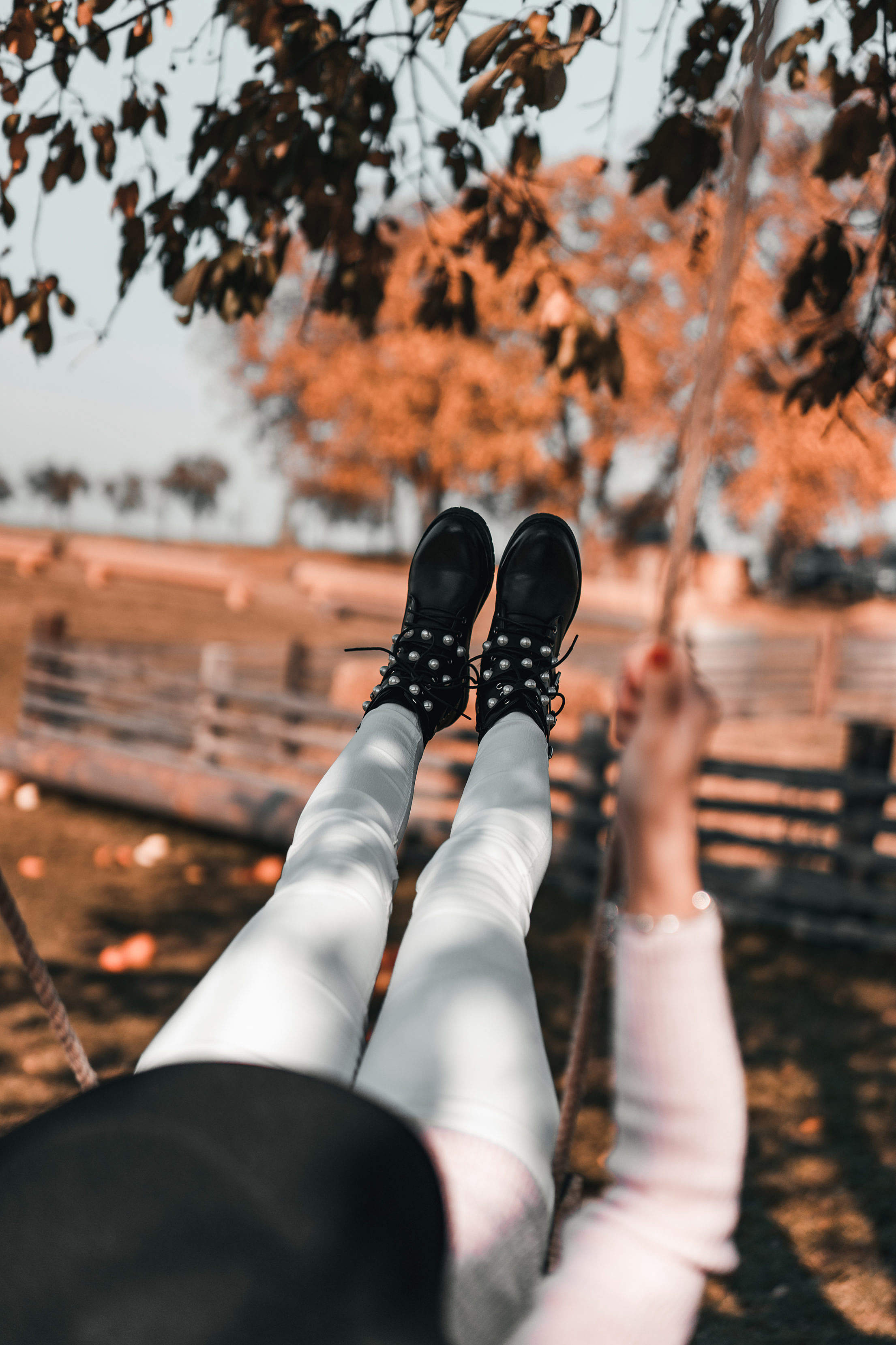 Woman on a Swing in an Autumn Nature Free Stock Photo