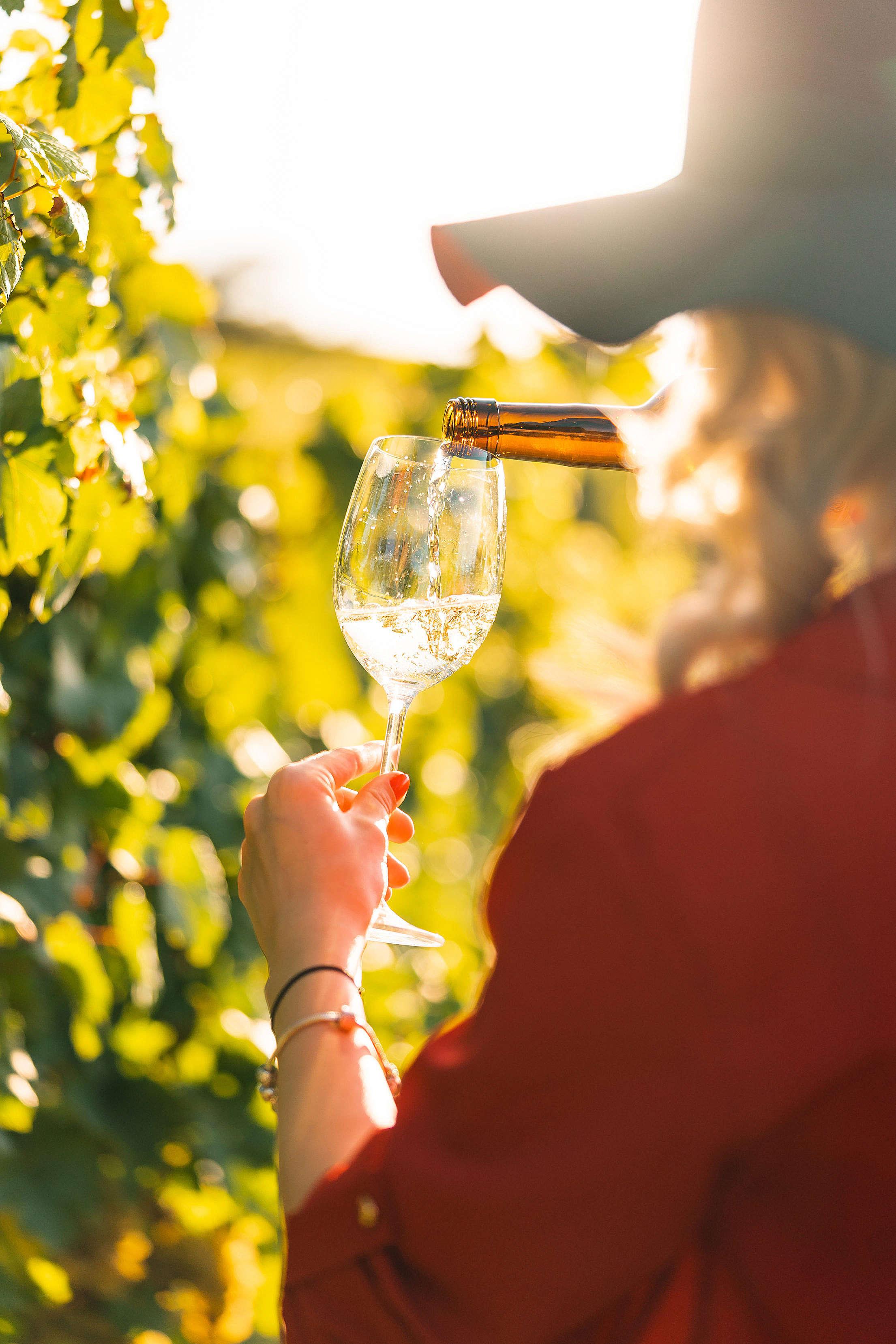 Woman Pouring Wine Free Stock Photo