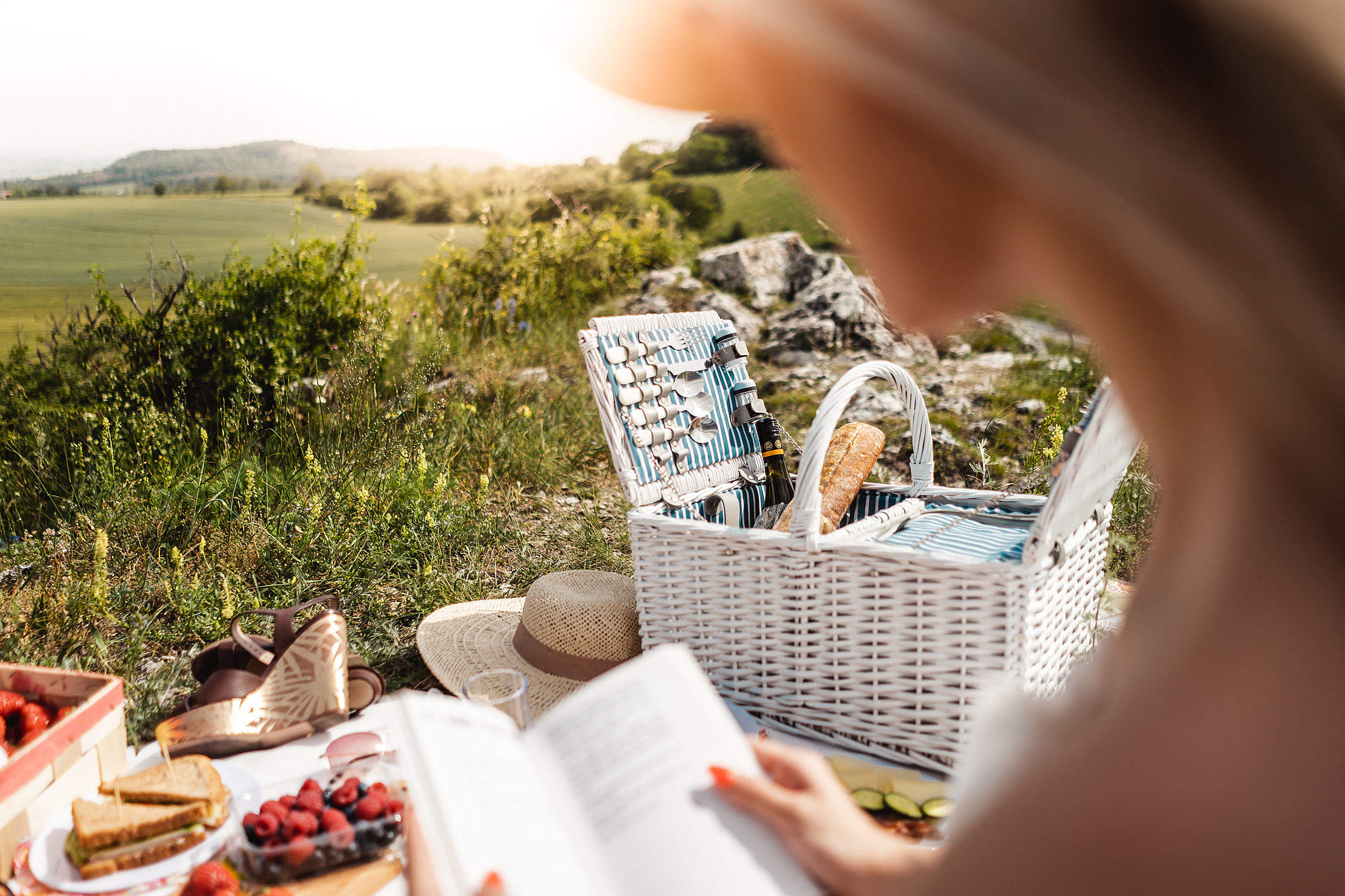 Woman Reading a Book on Picnic Free Stock Photo