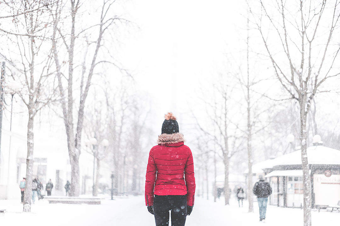 Download Woman Standing in The Middle of The Park in Snowy Weather FREE Stock Photo