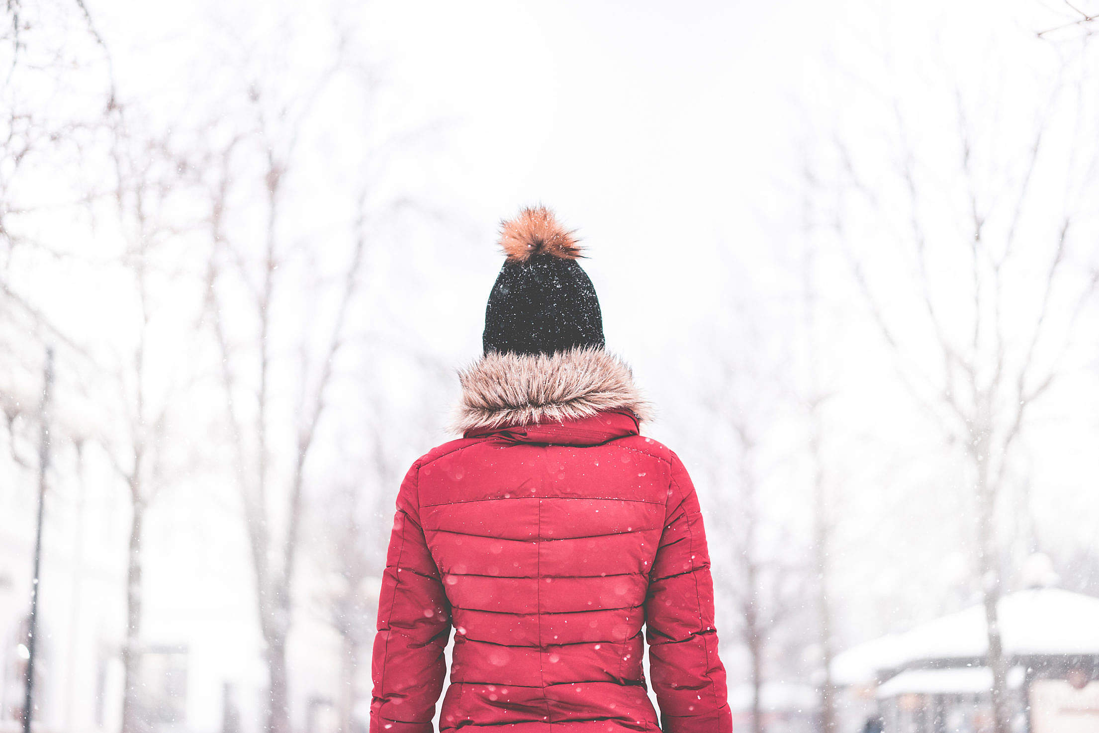 Woman Standing in The Middle of The Park in Snowy Weather #2 Free Stock Photo