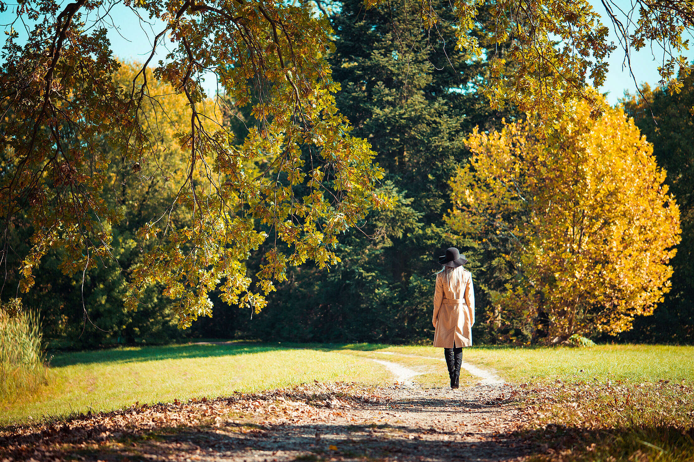 Woman Walking in a Park in Autumn Free Stock Photo