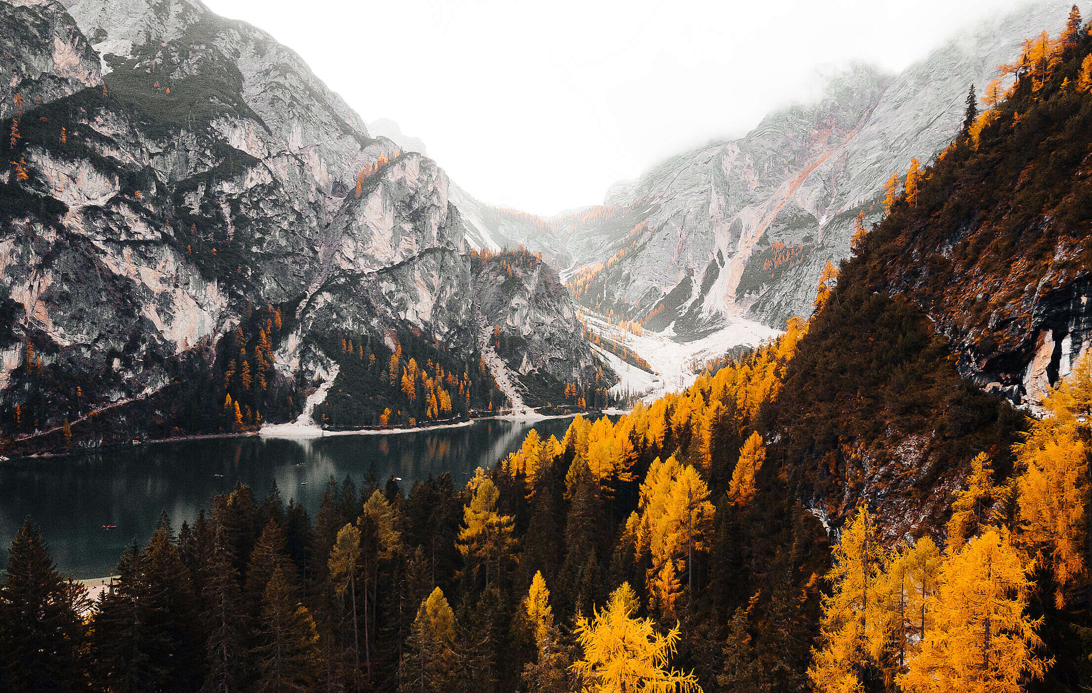 Wonderful Mountains in Fall Colors Free Stock Photo